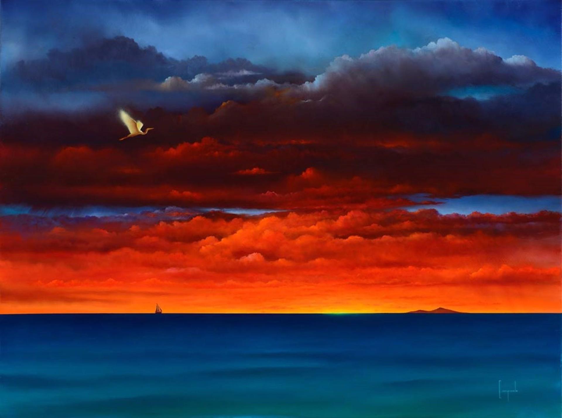 Big Island Flash by Dario Campanile