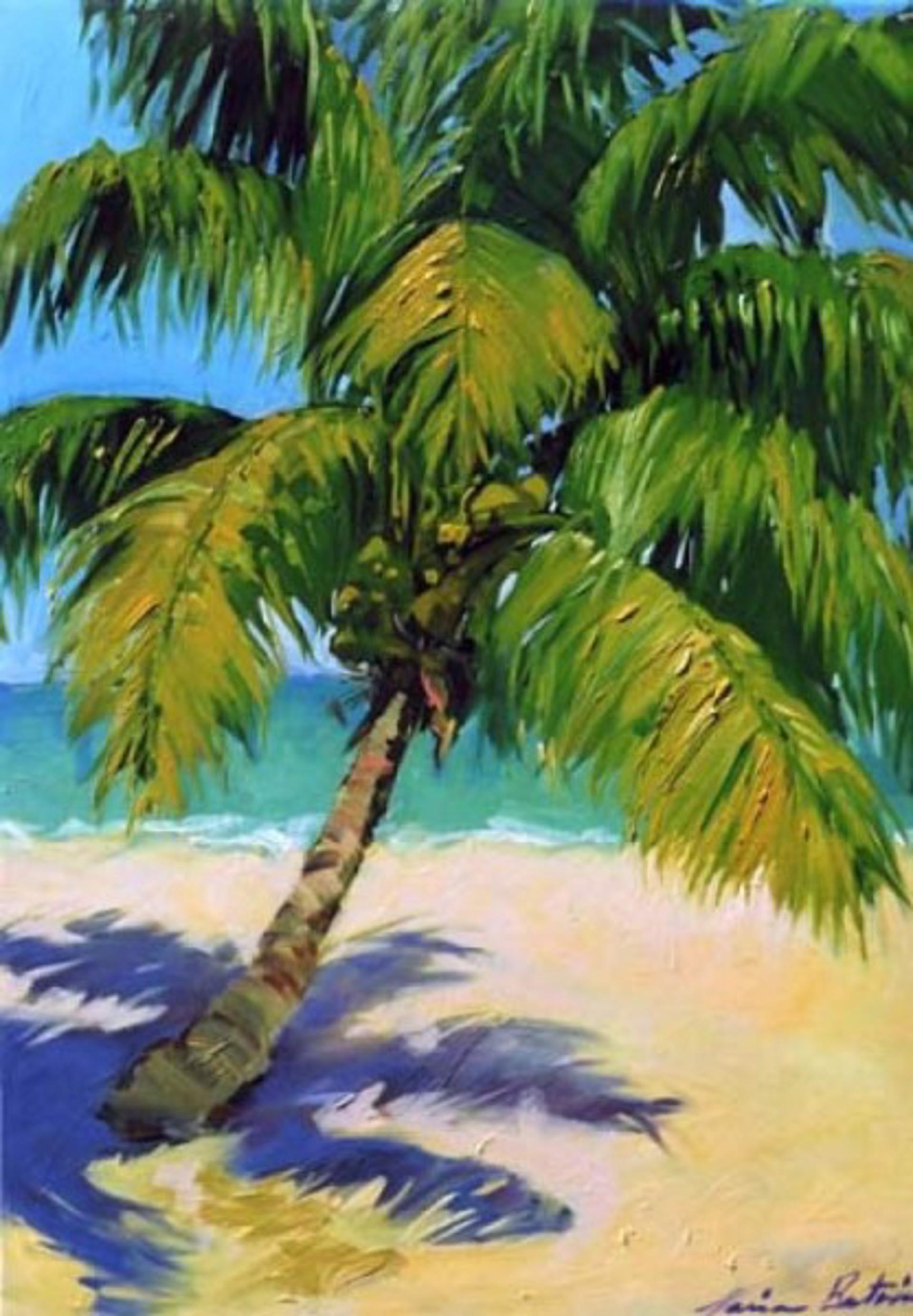 Bertran: Golden Palm Shadows by Maria Bertrán