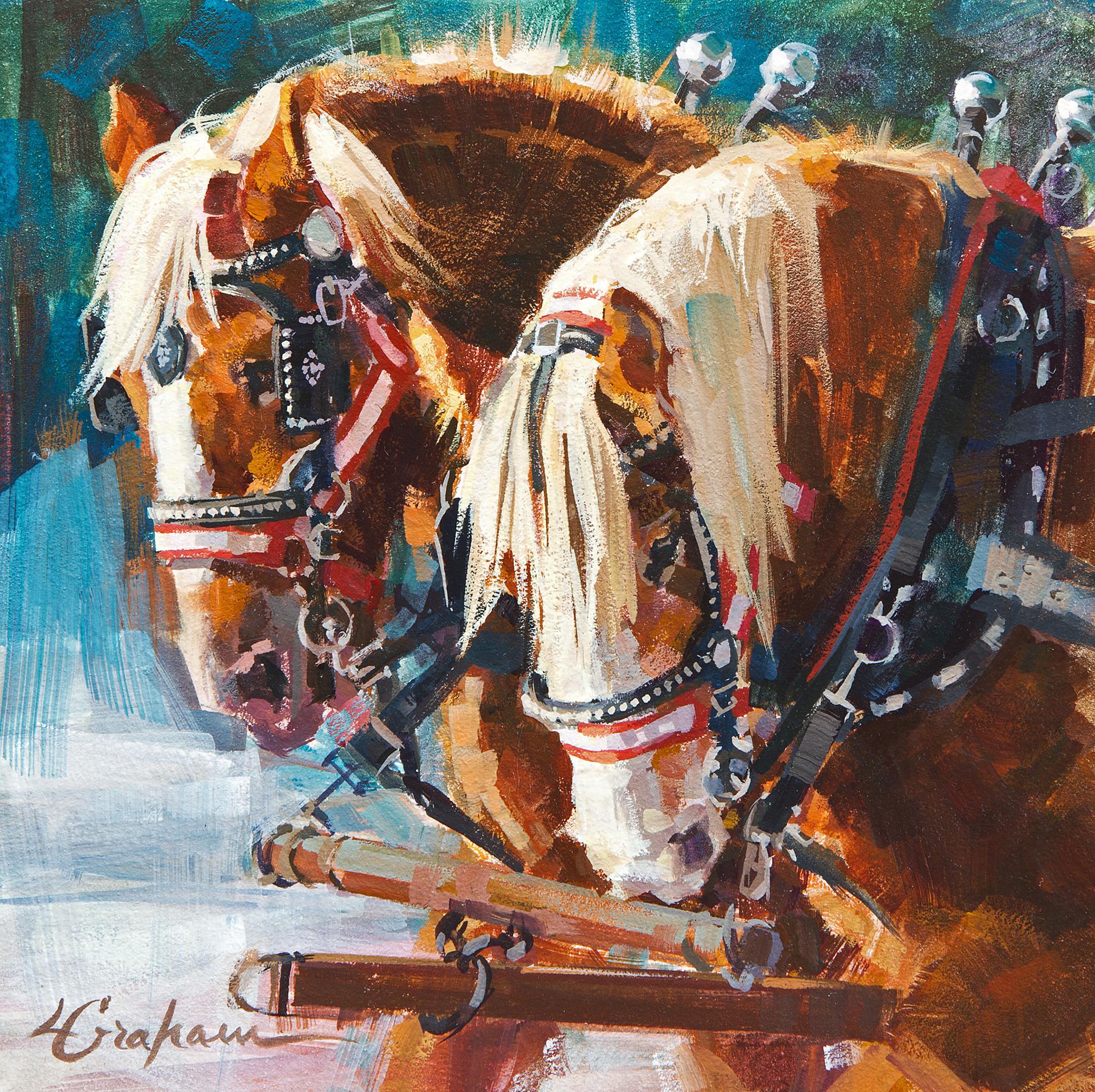 Homeward Bound by Lindsey Bittner Graham