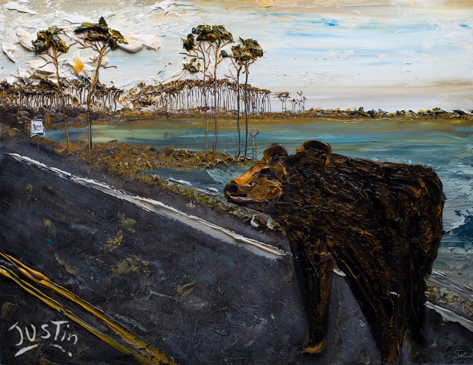 30A BEAR by JUSTIN GAFFREY