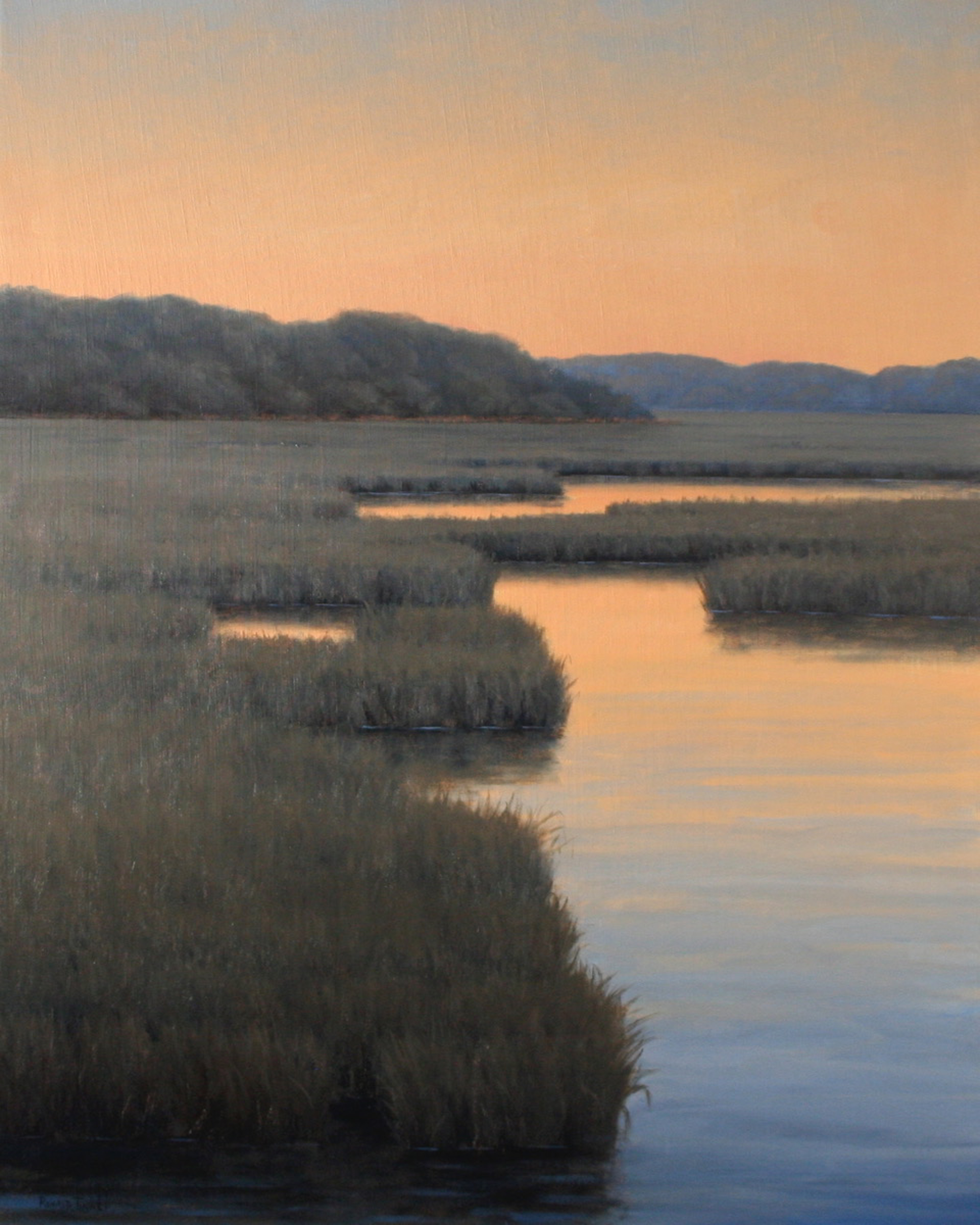 Quiet Reflections by Ronald Tinney