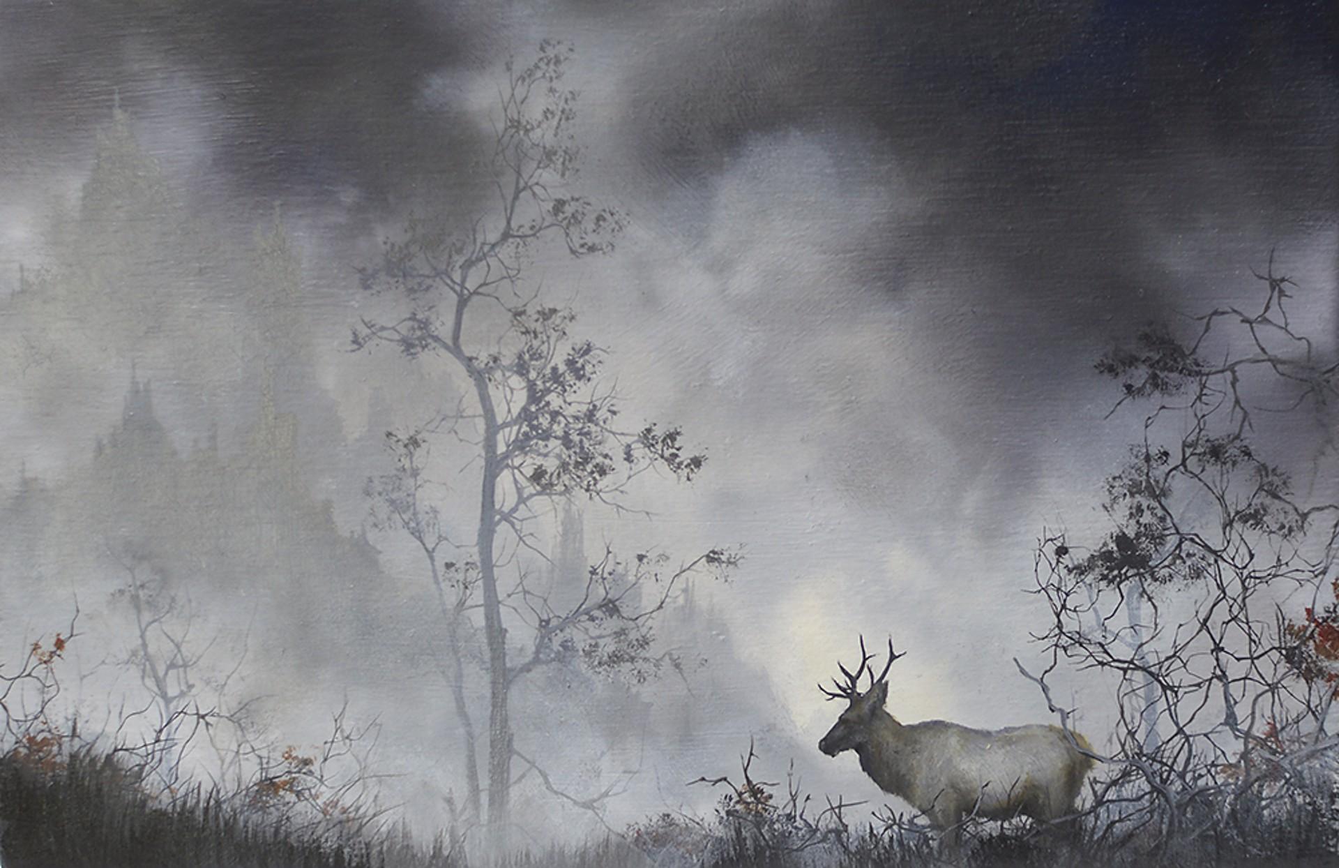 Elk by Brian Mashburn