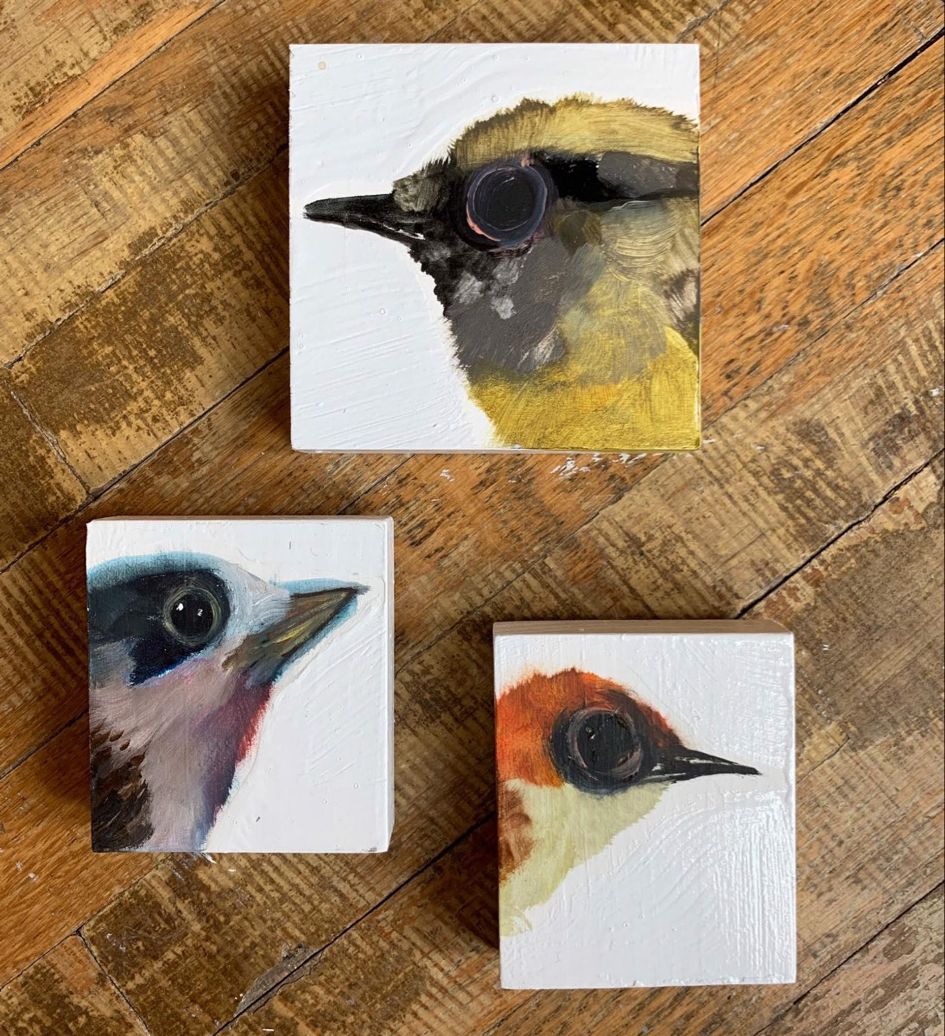 Bird Trio by Diane Kilgore Condon