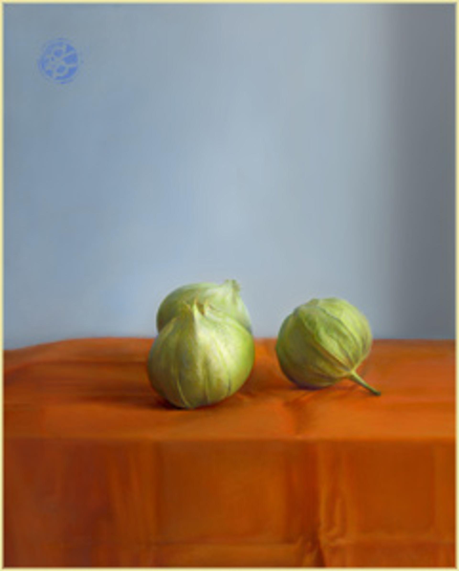 Tomatillos by Kate Sammons