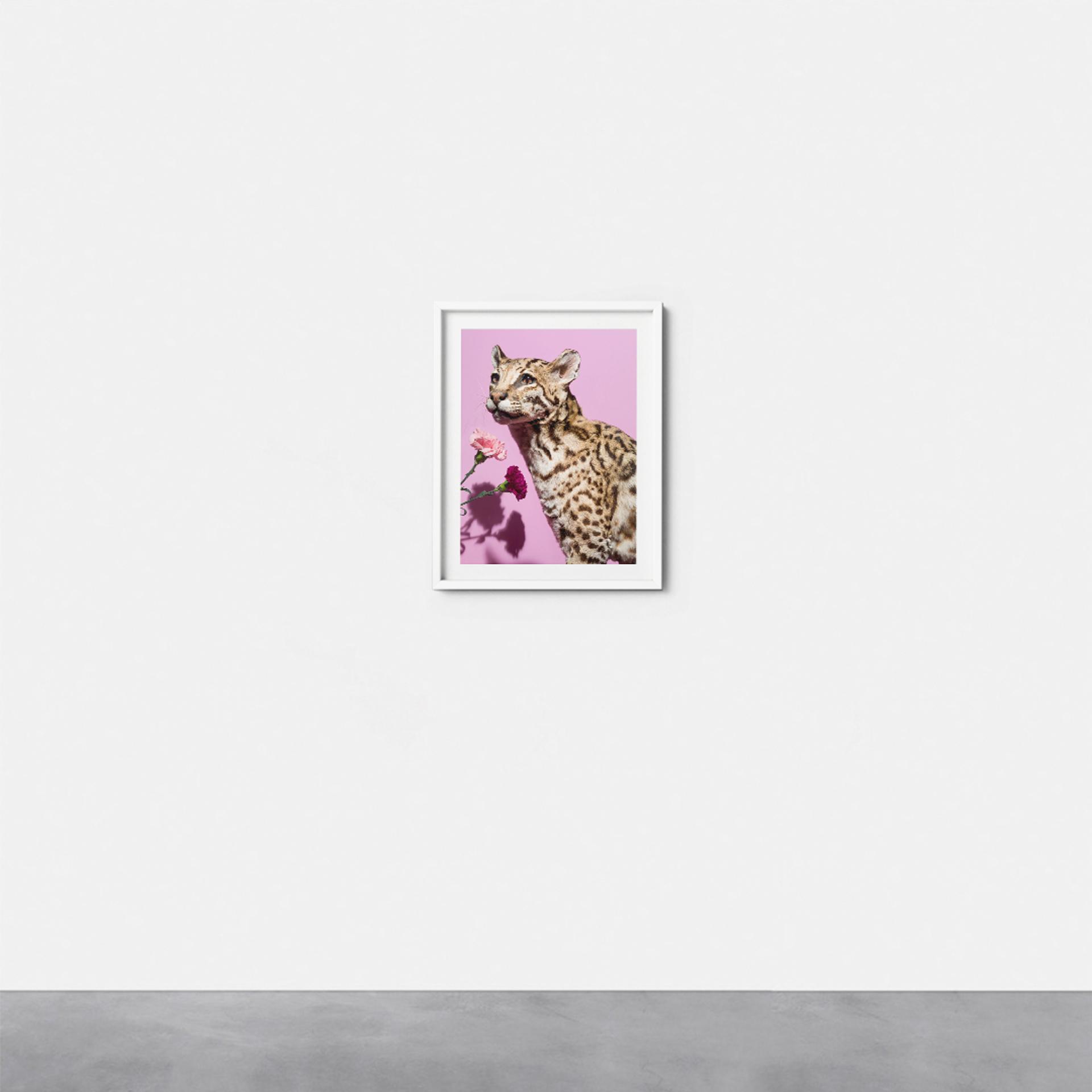 Extinct #4 by Gabriella Imperatori-Penn