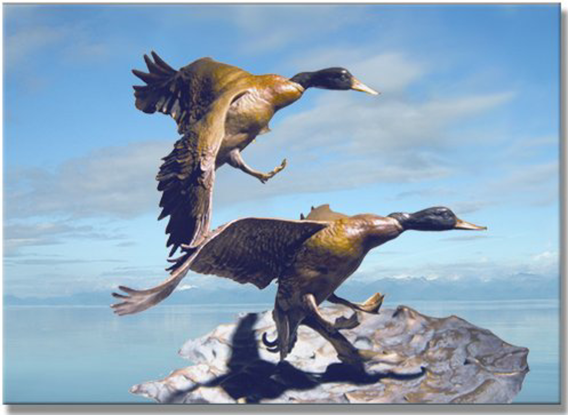 Wings Against the Wind (Mallards) by Clark Bronson