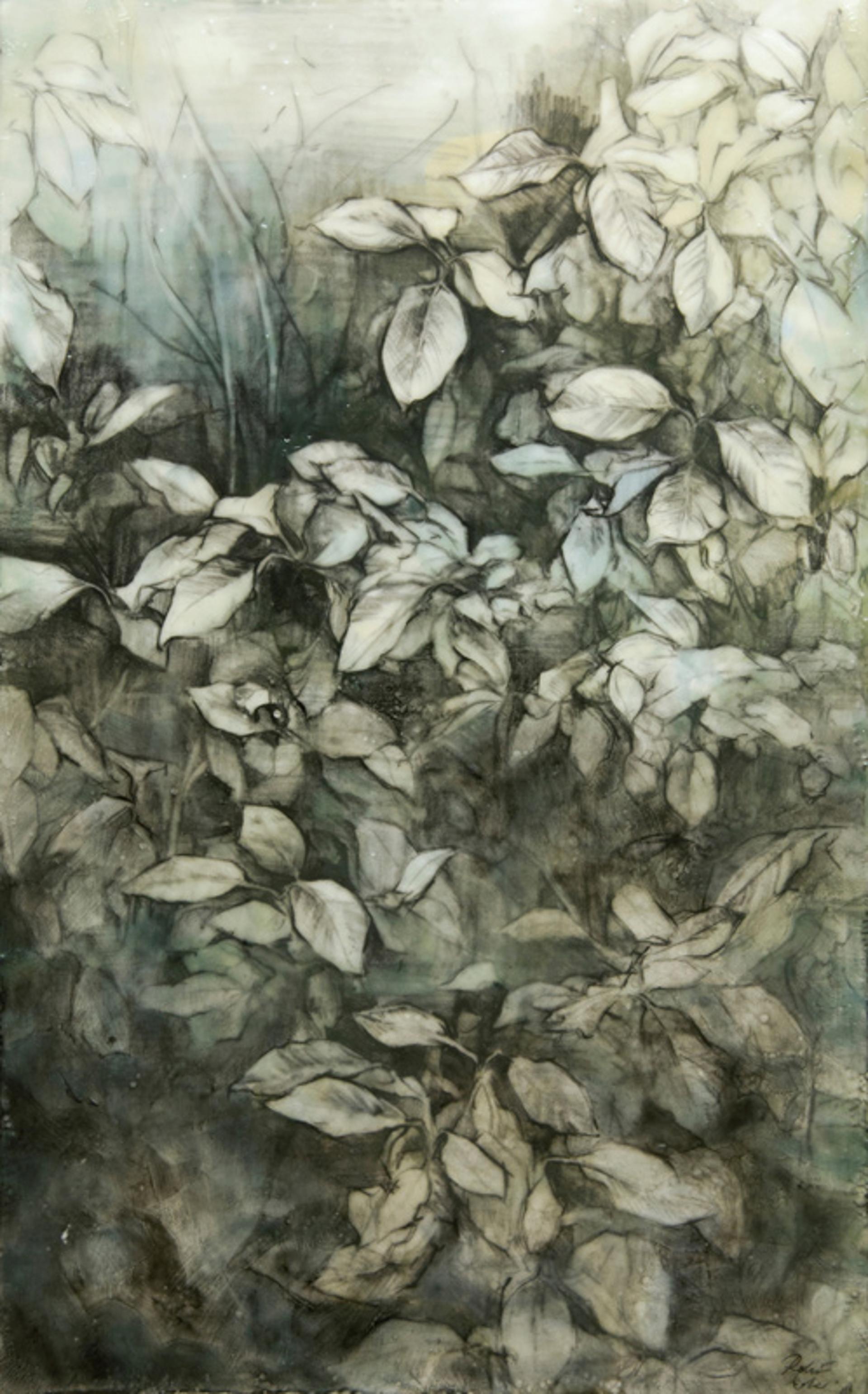 Seeking the Green Man by Robin Cole
