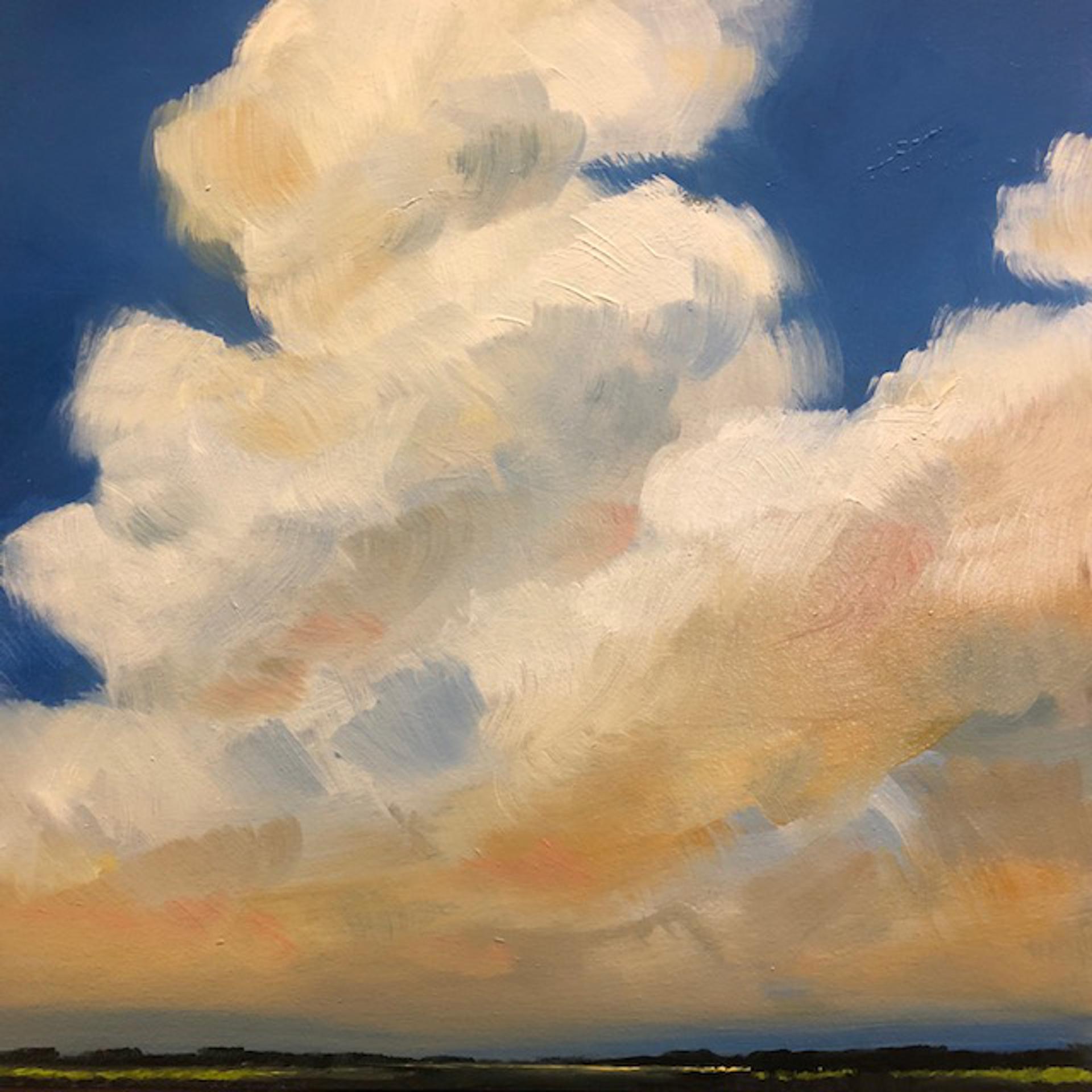 Cumulonimbus by Paula Wallace