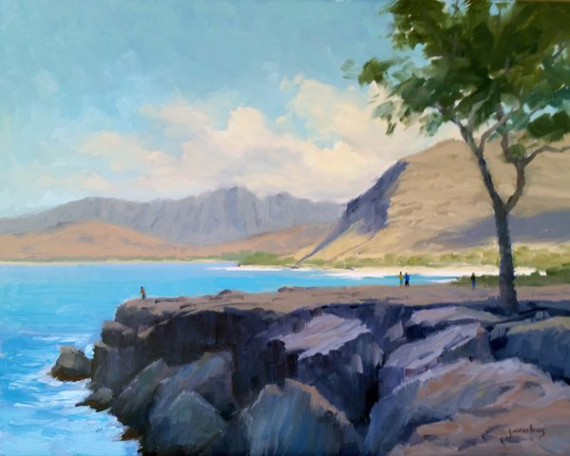 View Of The Waianae Range by Jacobus Baas