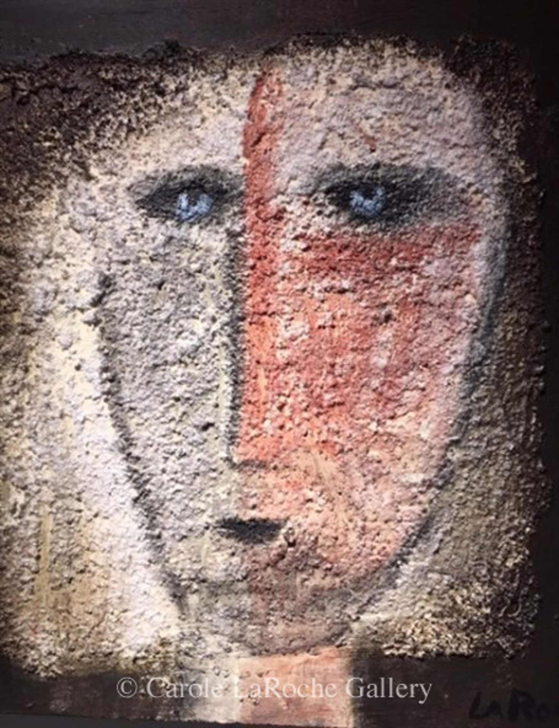 YOUNG SHAMAN by Carole LaRoche