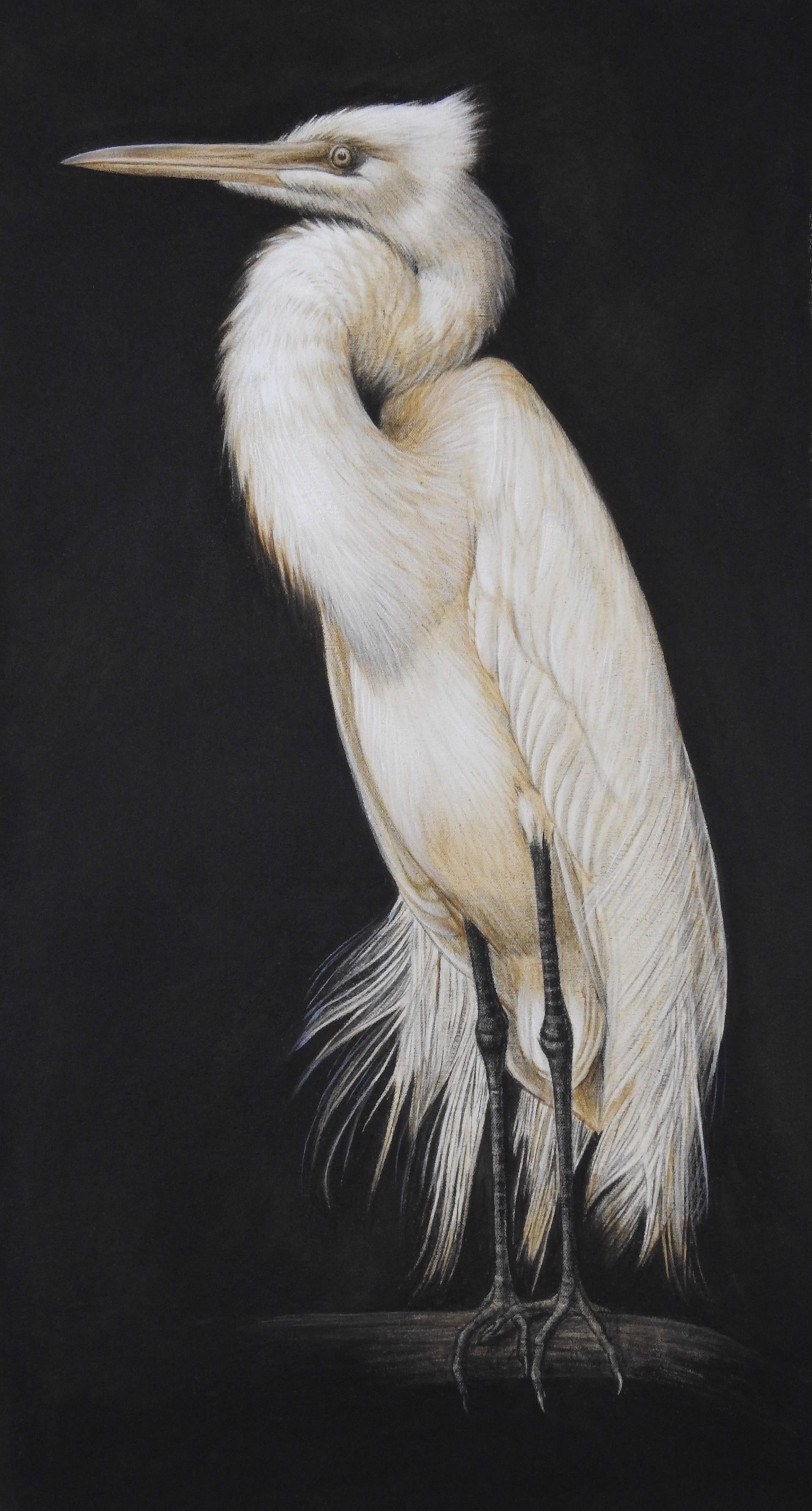 Great Egret Etude by Margie Crisp