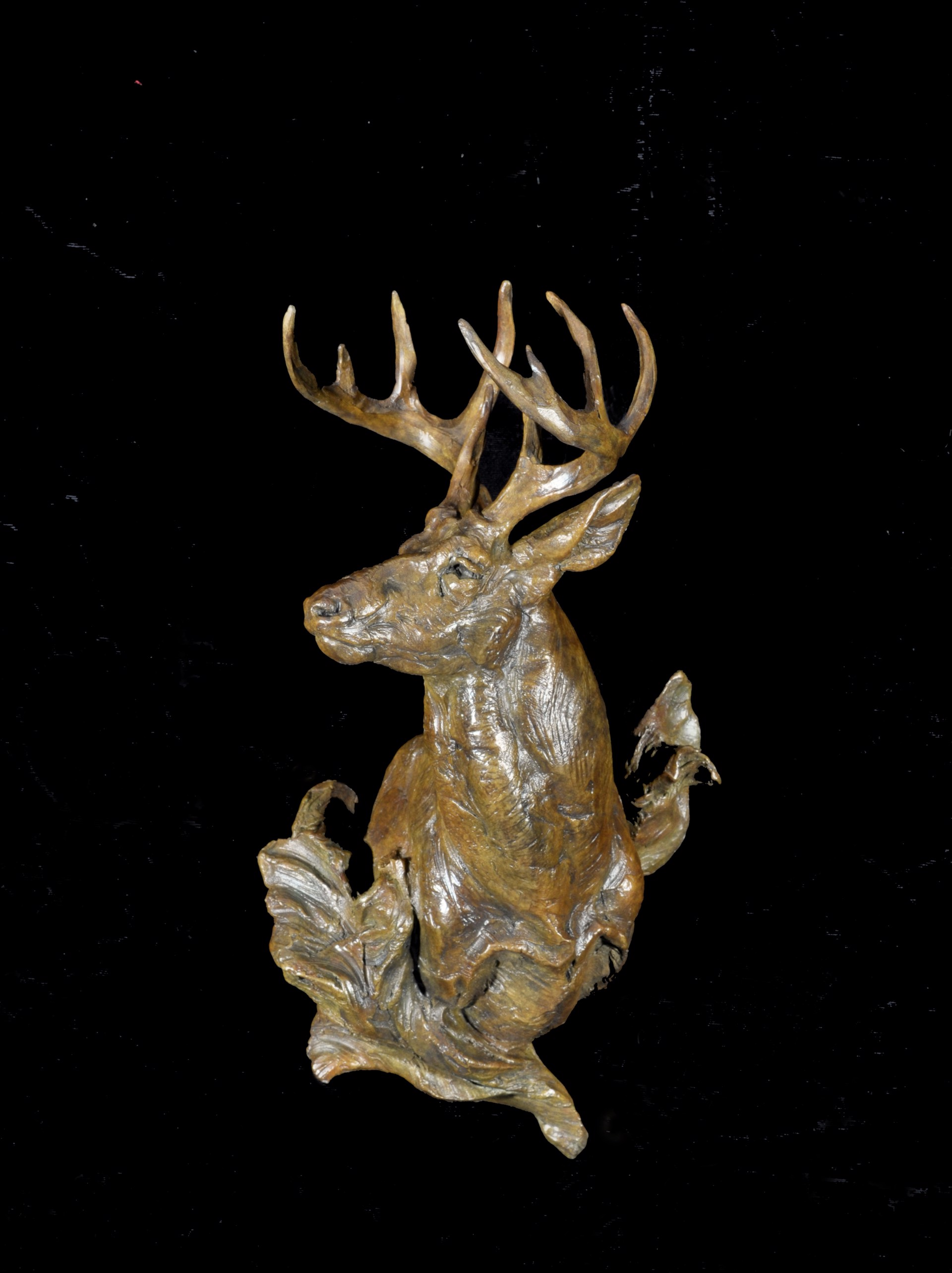 On High Alert (Whitetail Deer) by Tim Shinabarger