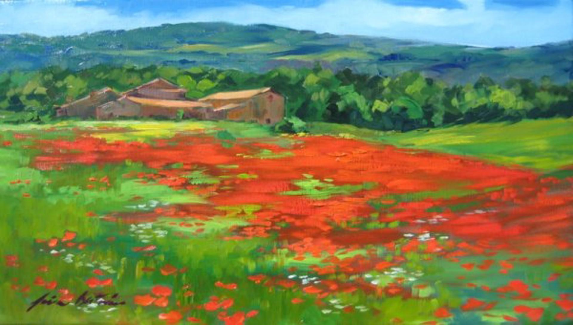 Vacheres Poppy Field by Maria Bertrán