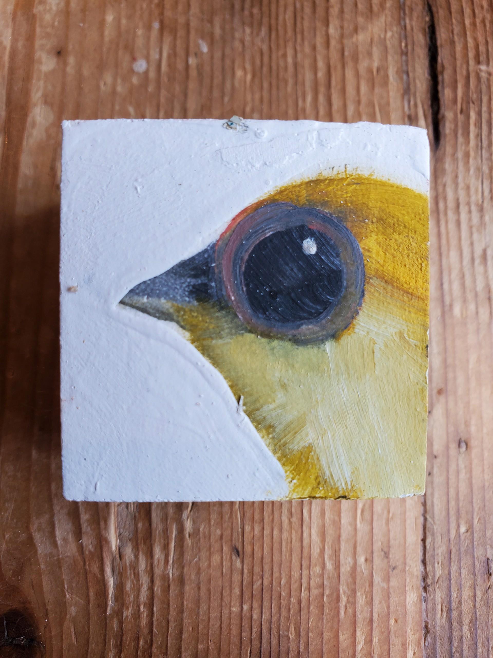 Baby Bird Block by Diane Kilgore Condon