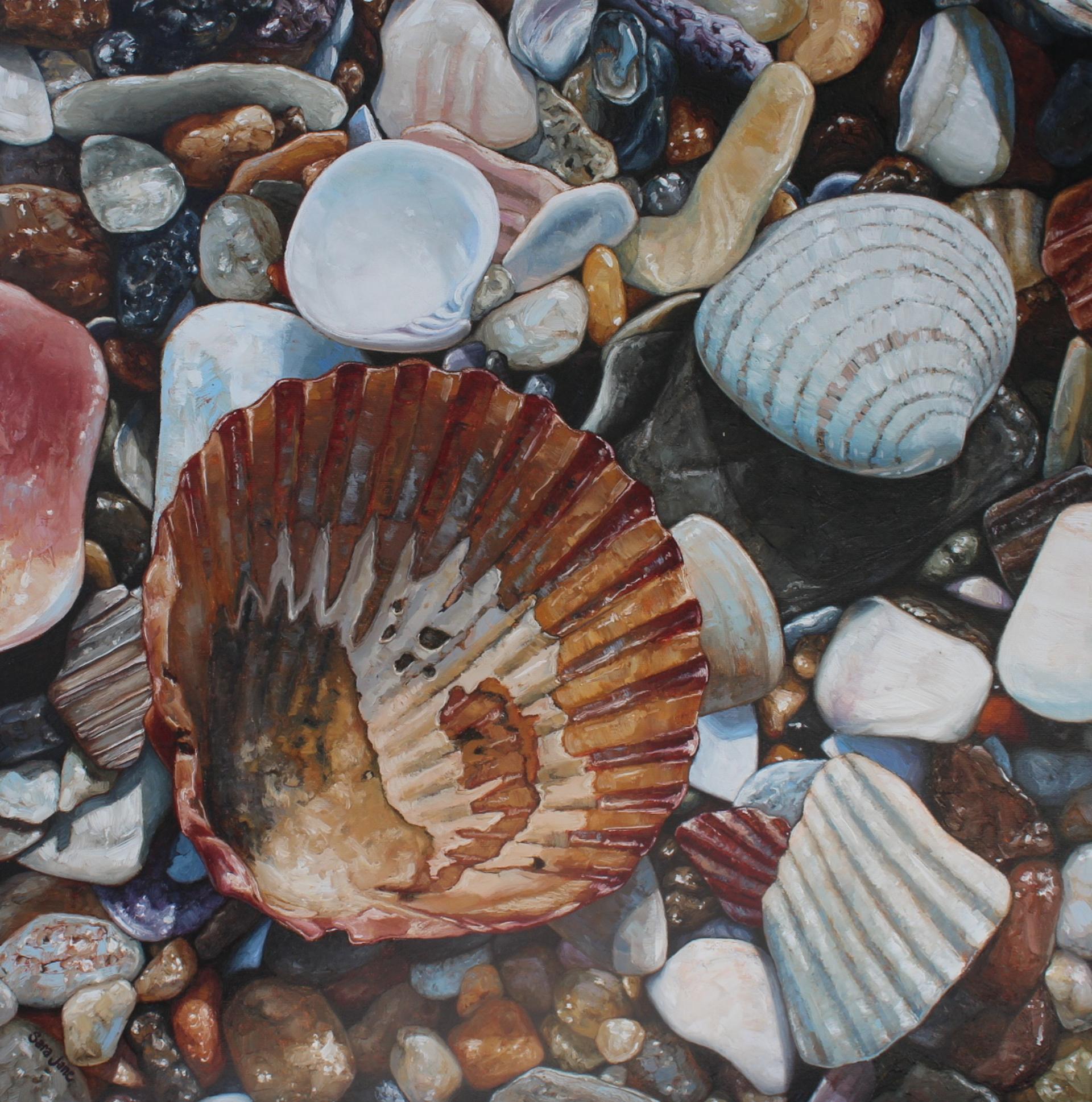 Seacret Love by Sara Jane Doberstein