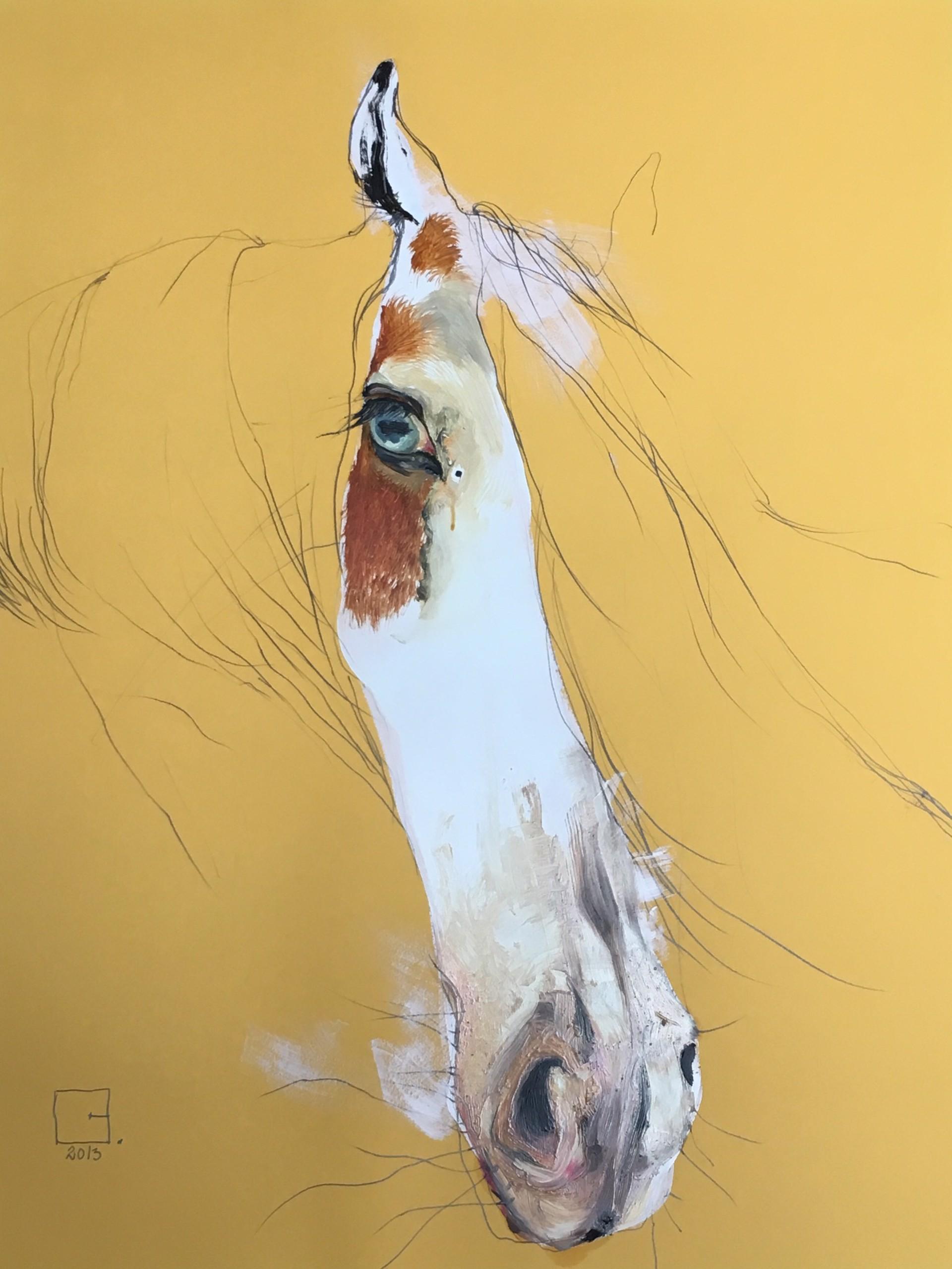 Albino by Olga Gál