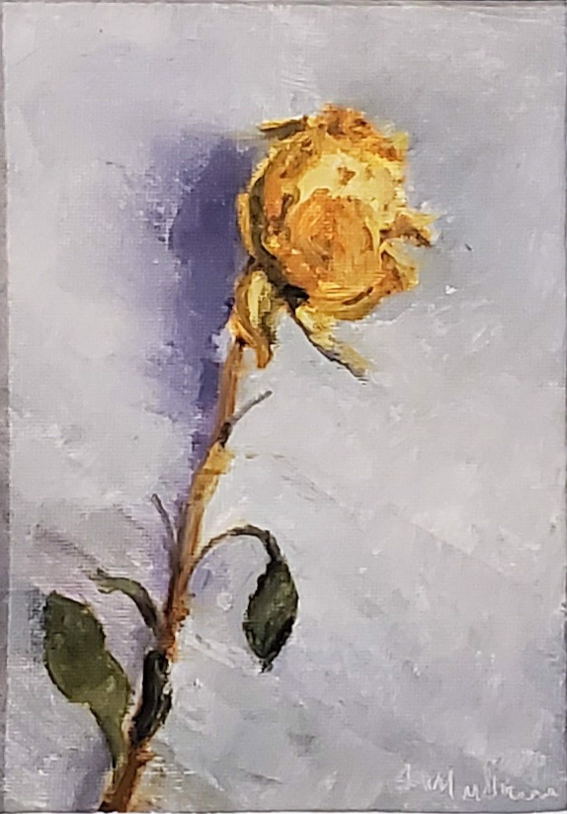 Yellow Rose by Joe Mullican