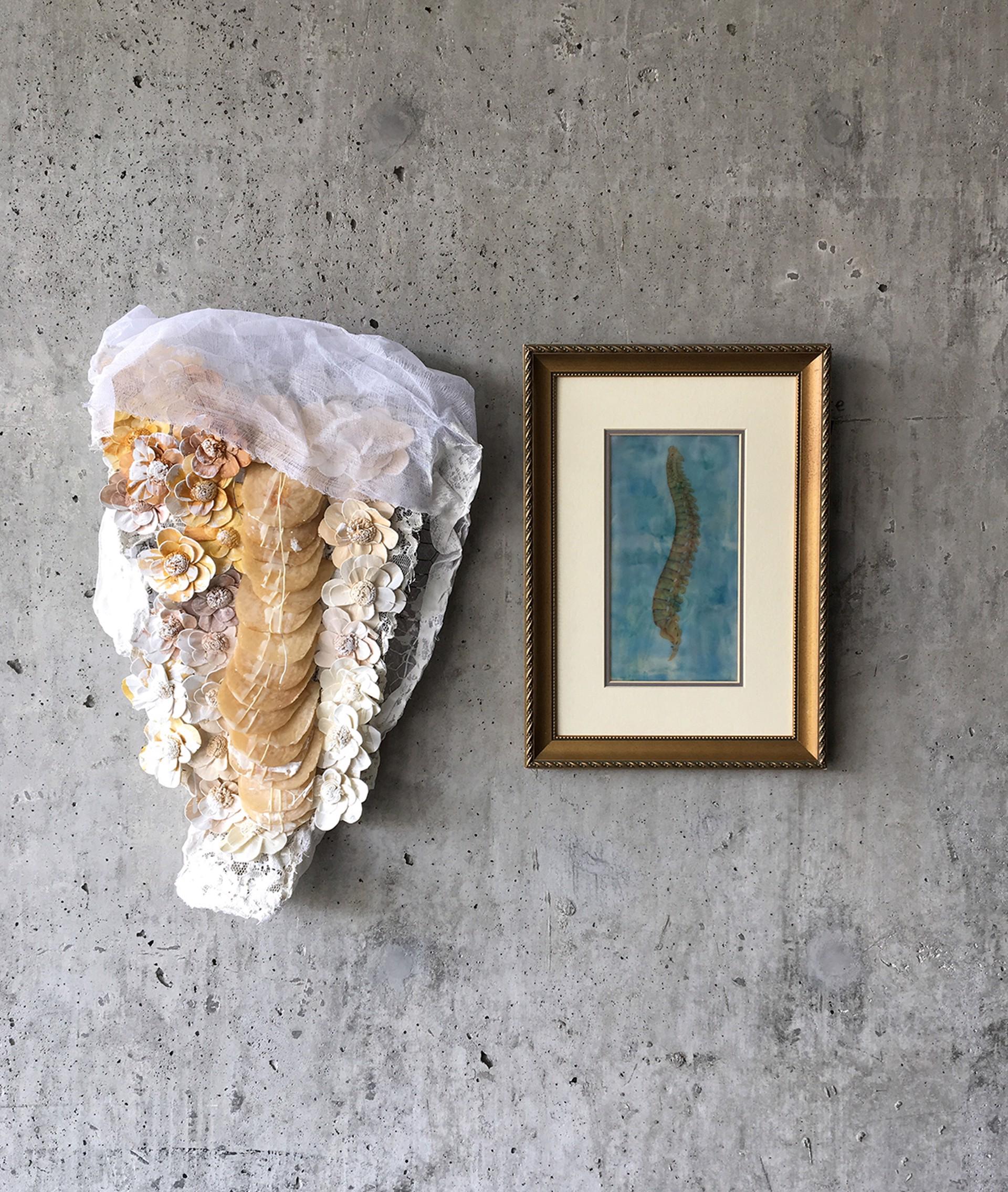 Collapse by Deborah Kapoor