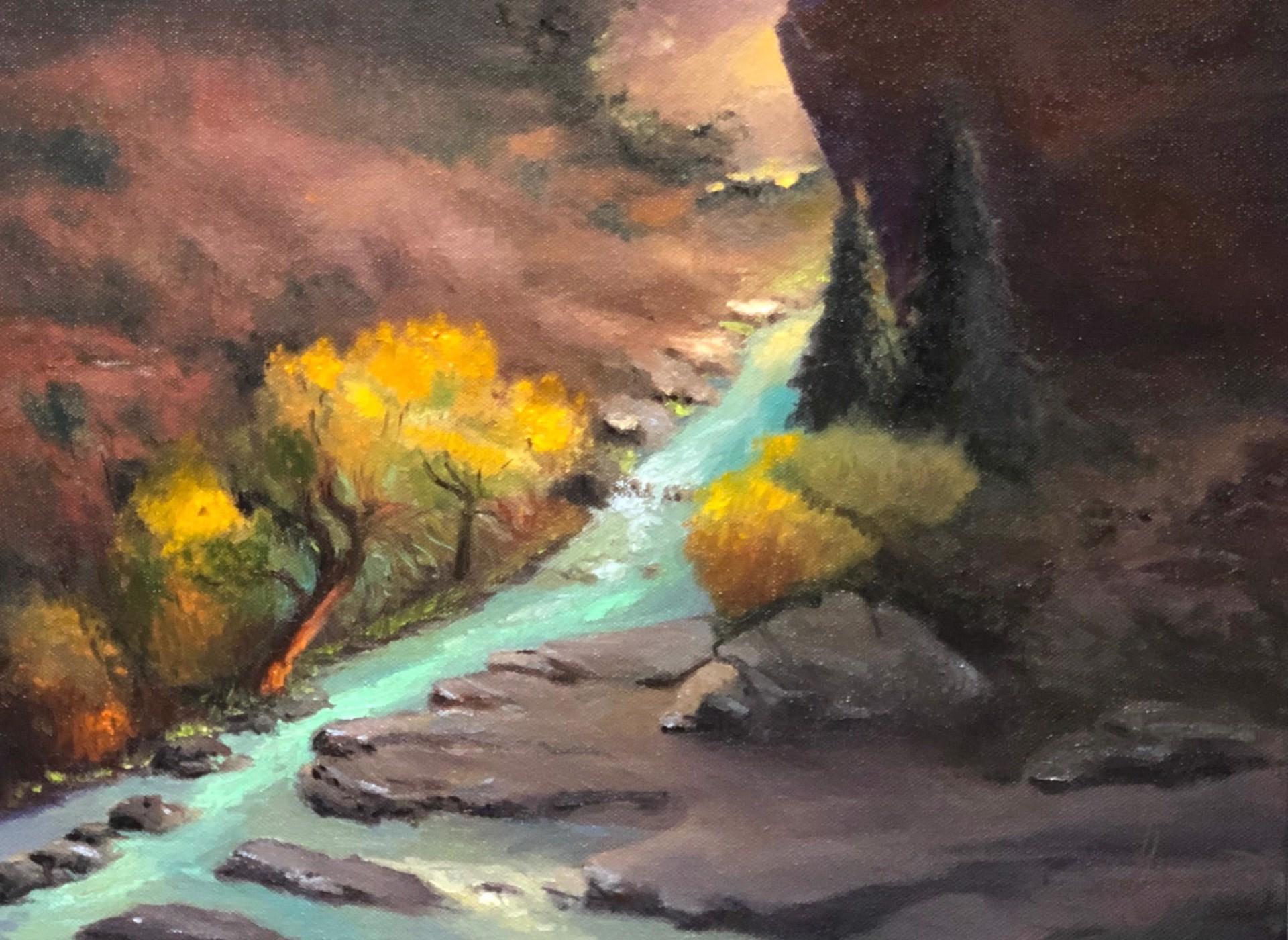 Flowing River by Craig Freeman