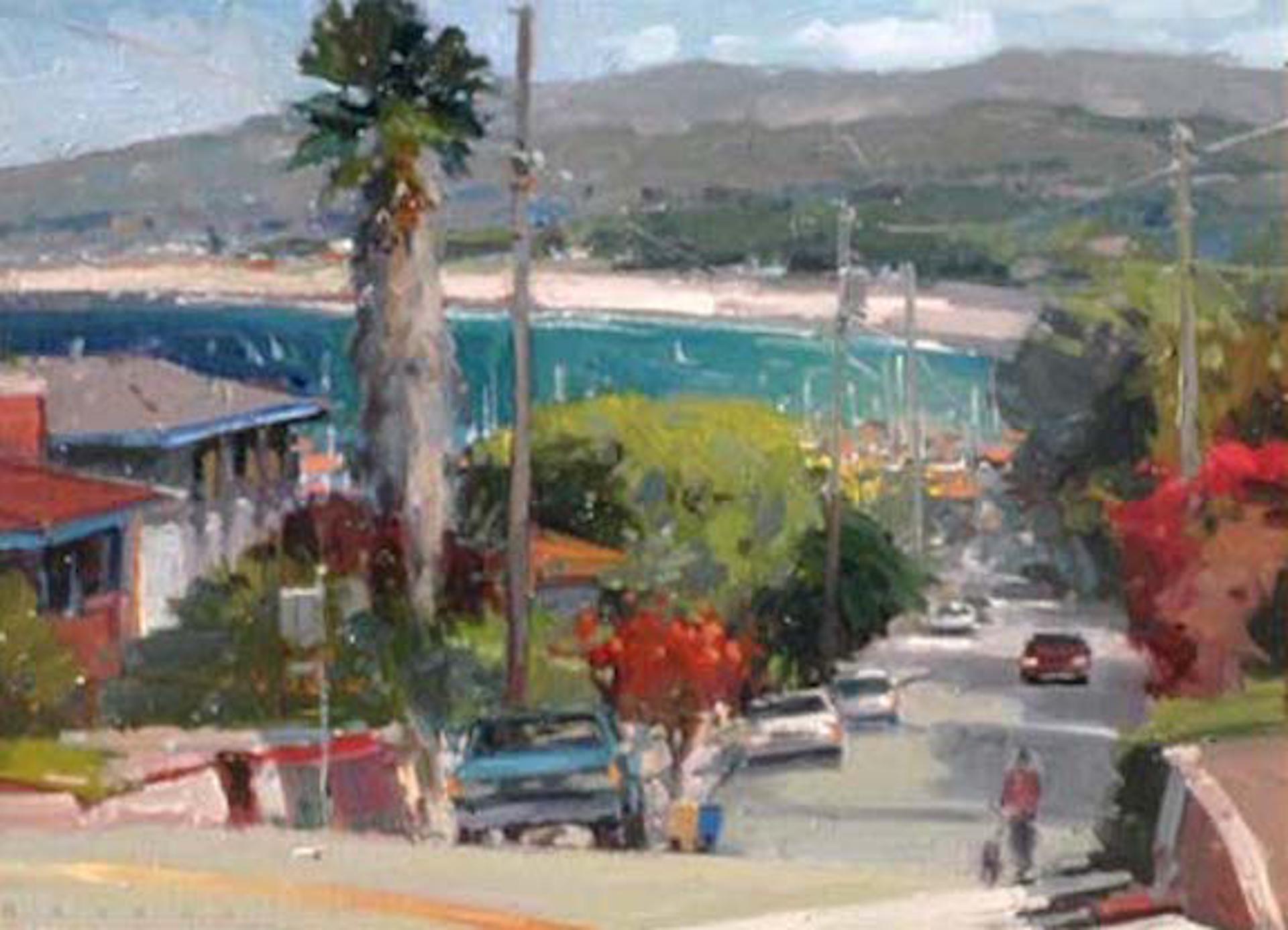 Vista To Monterey Bay by Ronaldo Macedo