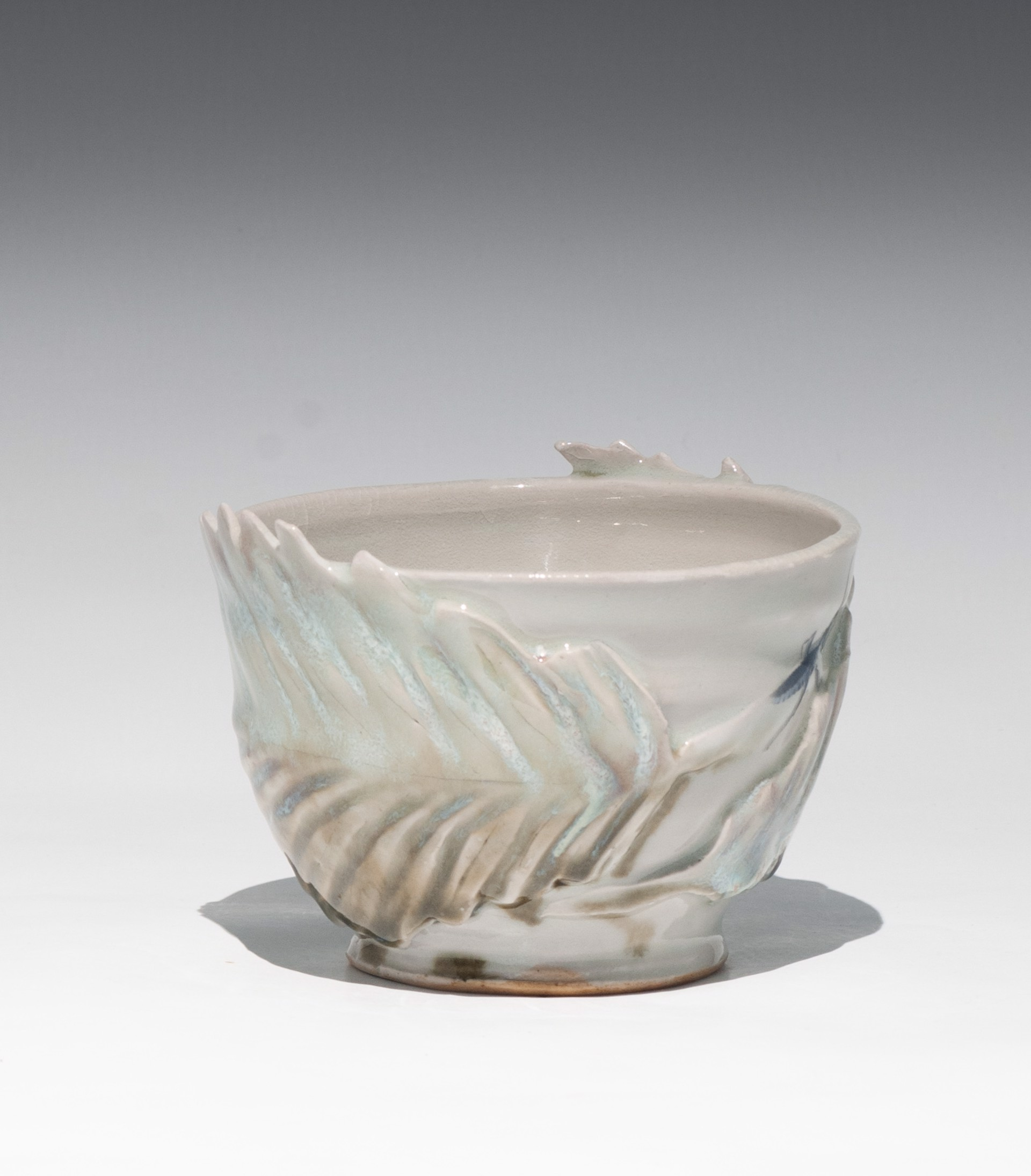 Insect Bowl by Caroline Bottom Anderson