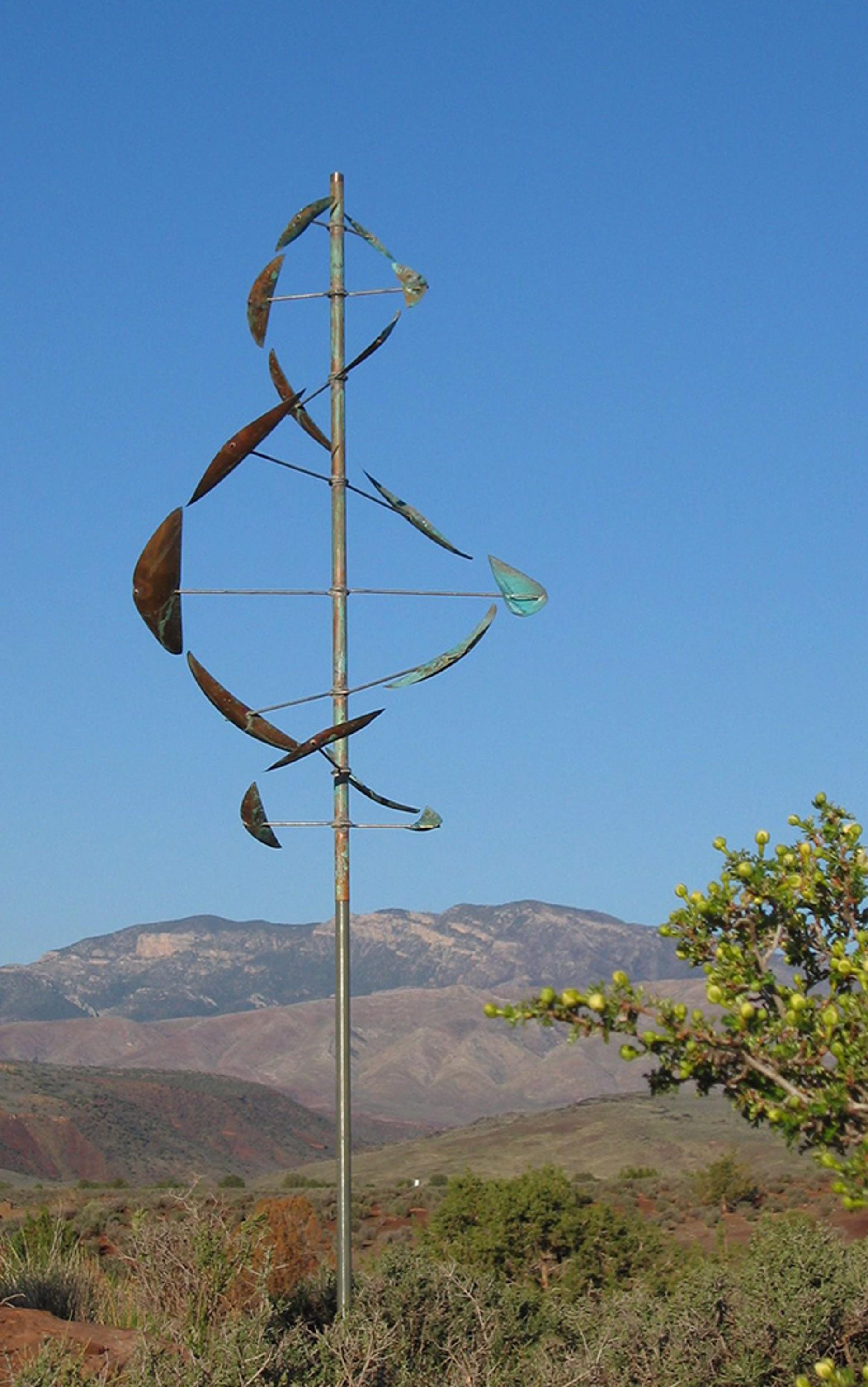 Wind Dancer by Lyman Whitaker
