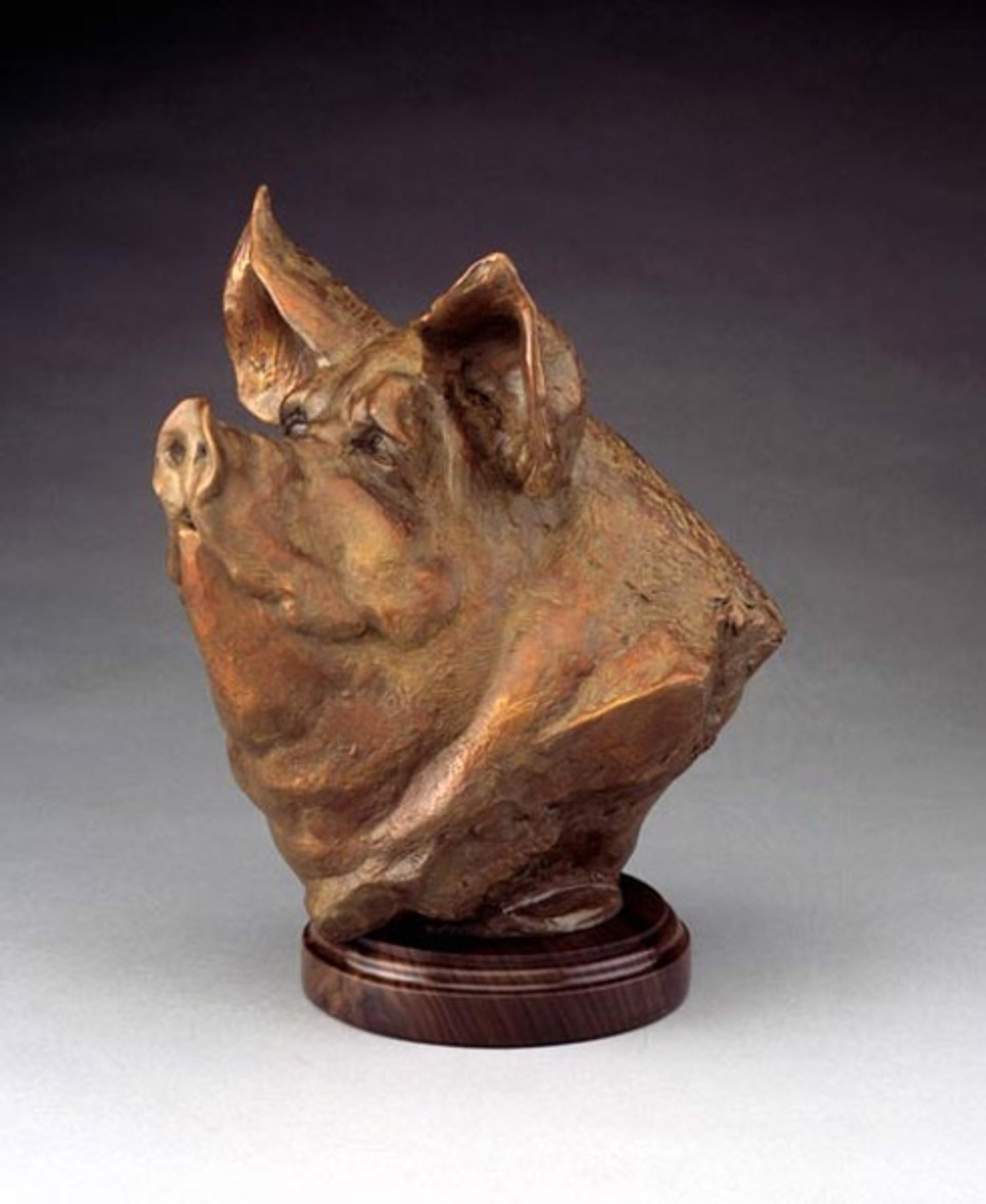 Pig Bust by Sandy Scott