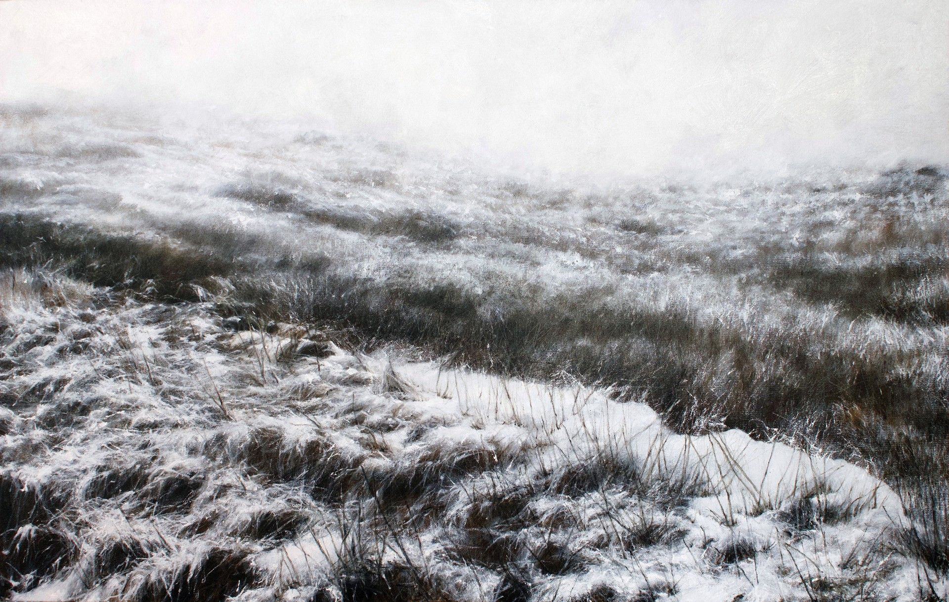 Cape Spear in the Snow by Lisa Lebofsky
