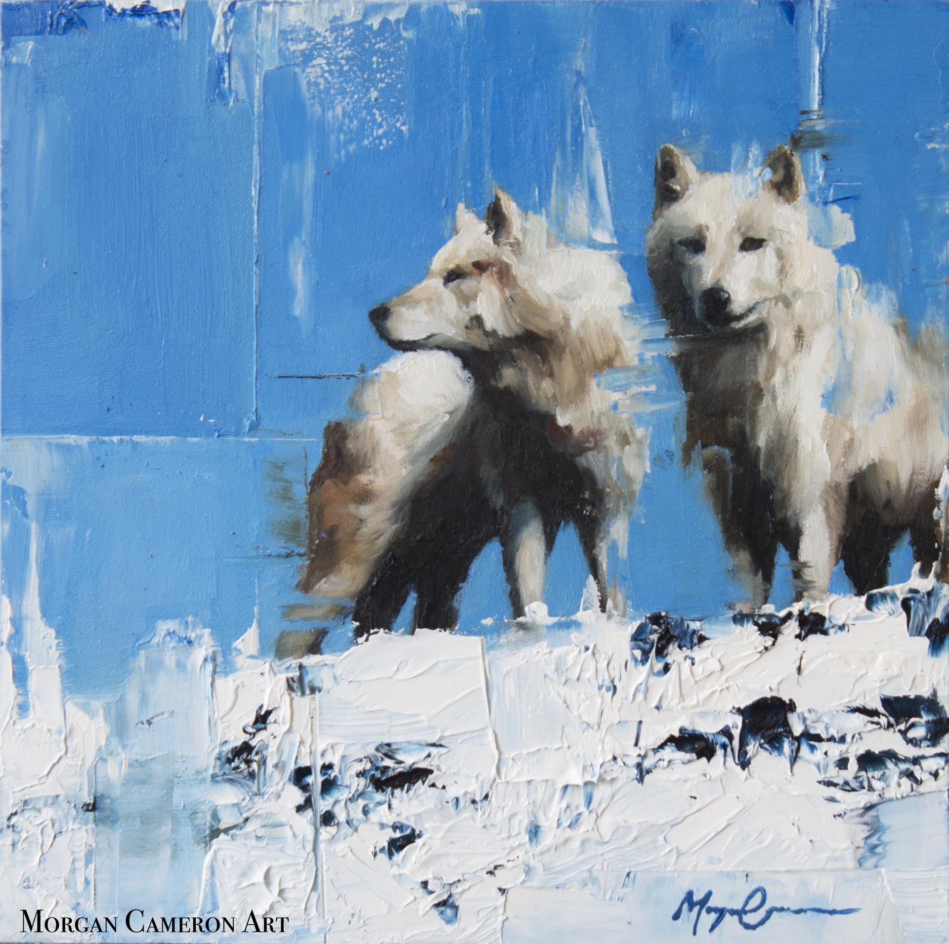Shadows in the Snow by Morgan Cameron