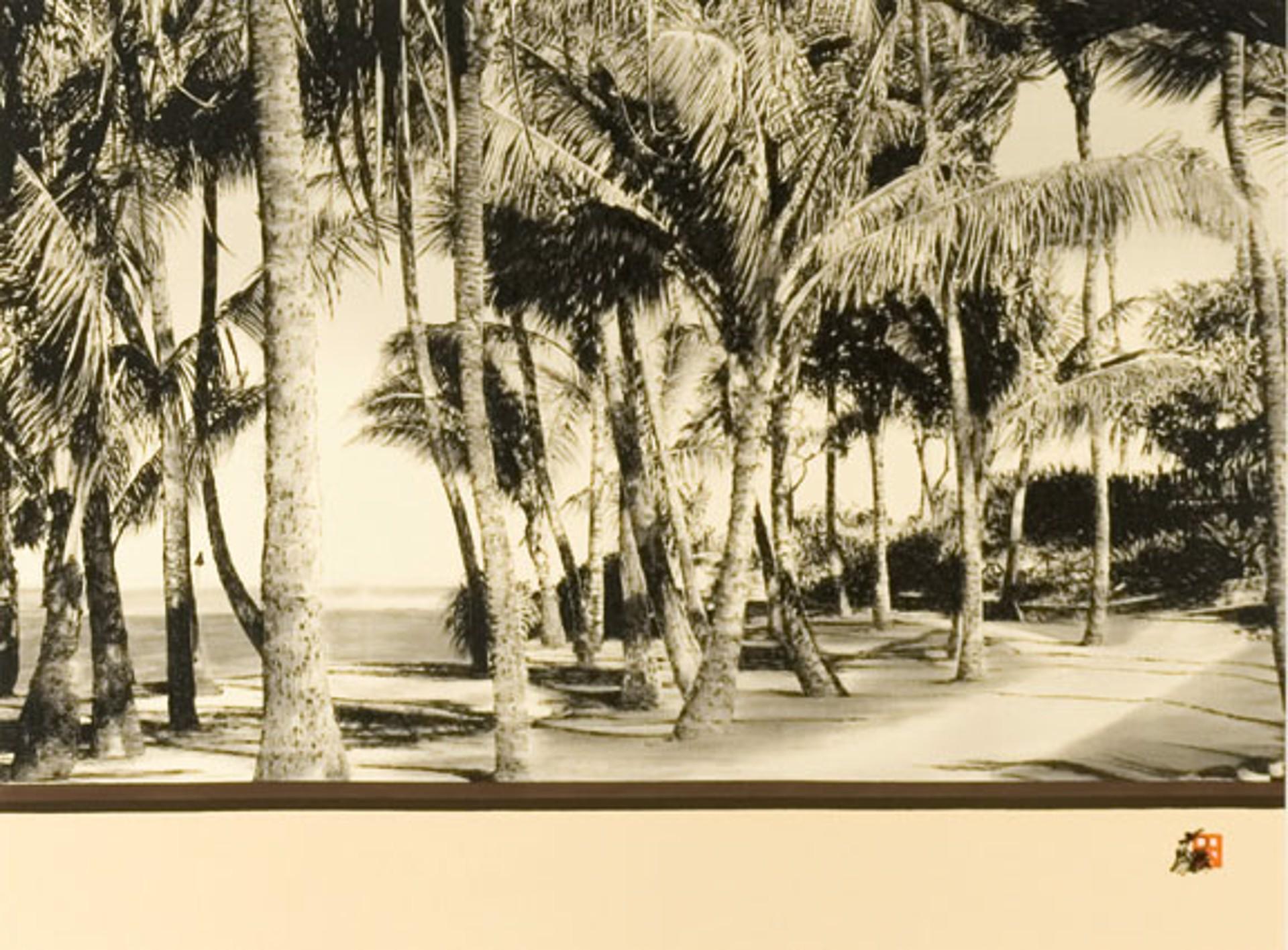 Kuau Cove by Hisashi Otsuka