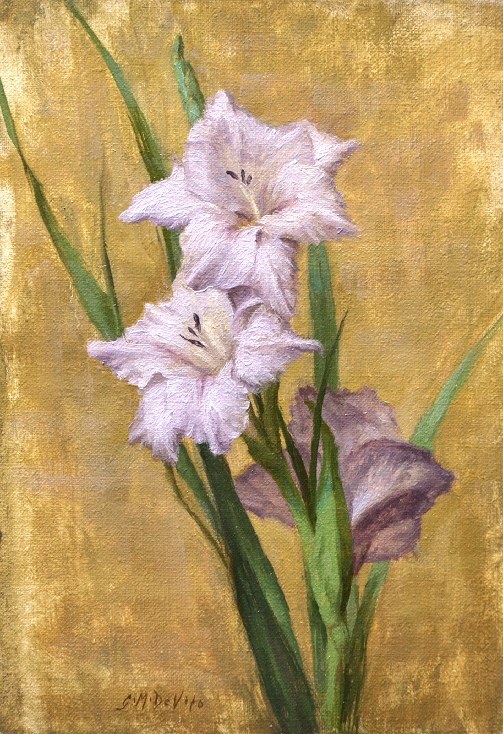 Violet Gladiola by Grace DeVito