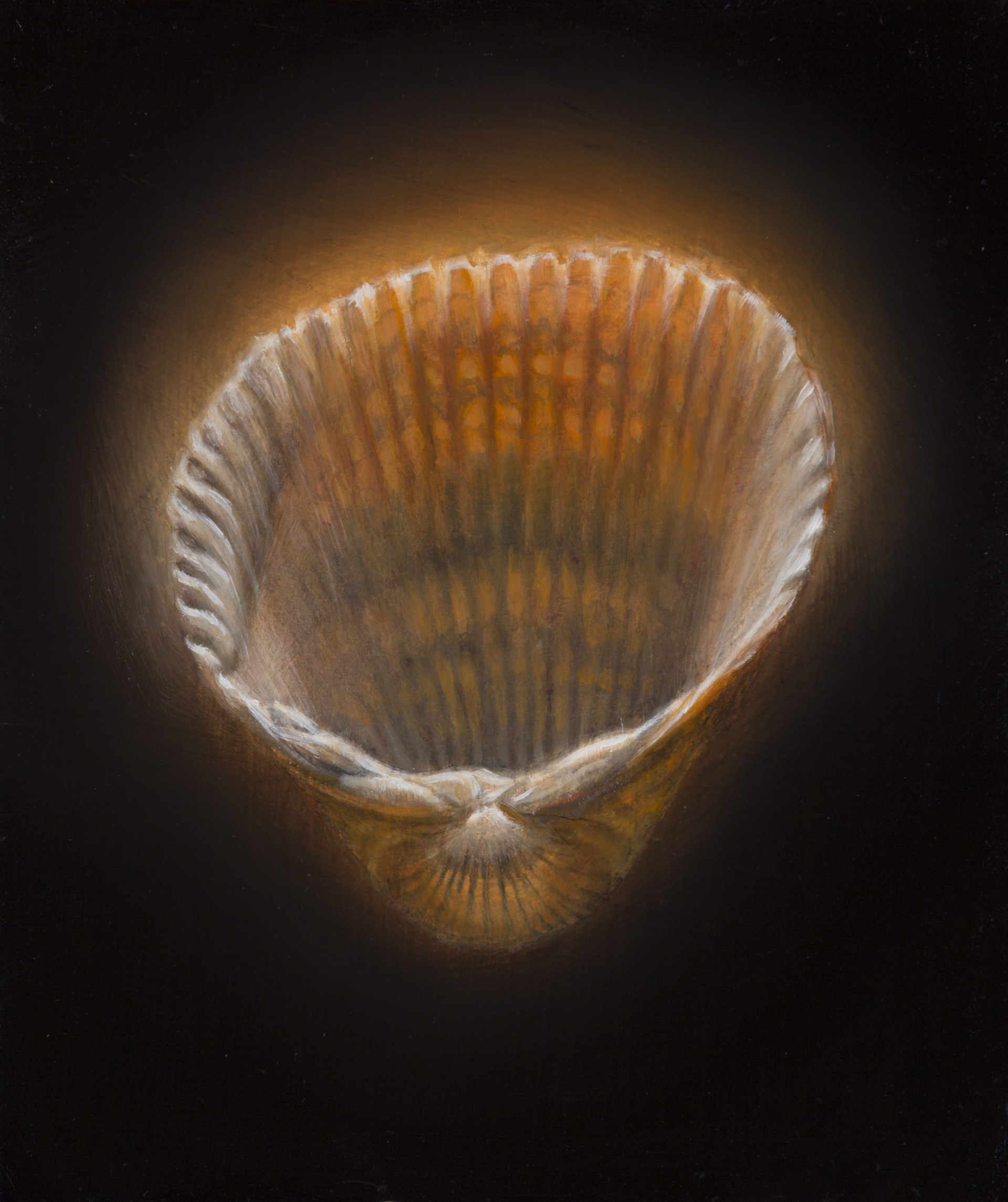 Shell 13 by Gregory Block