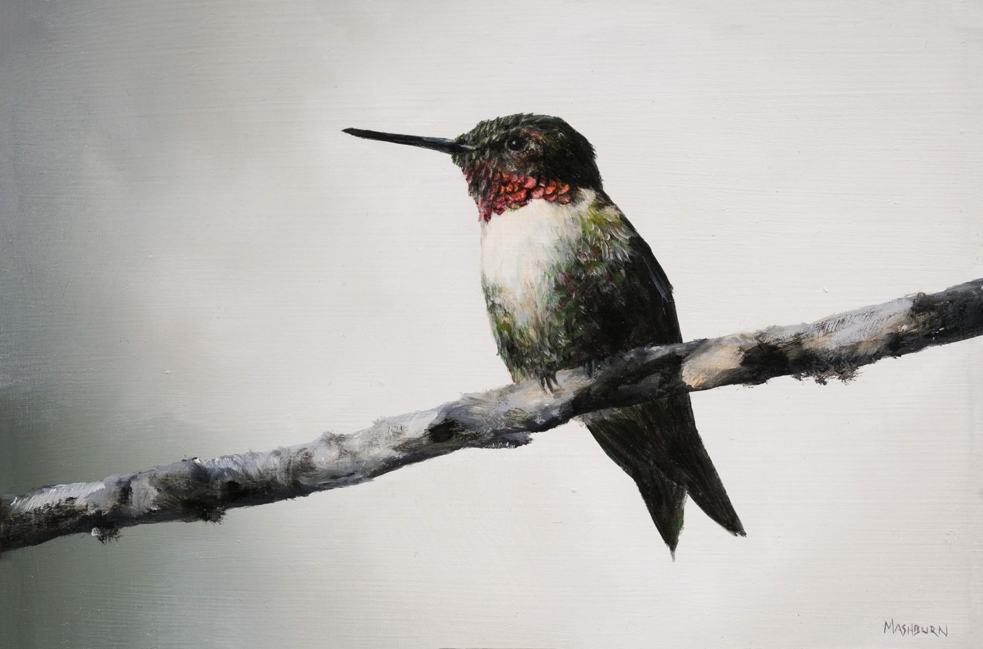 Ruby Throated Hummingbird #2 by Brian Mashburn