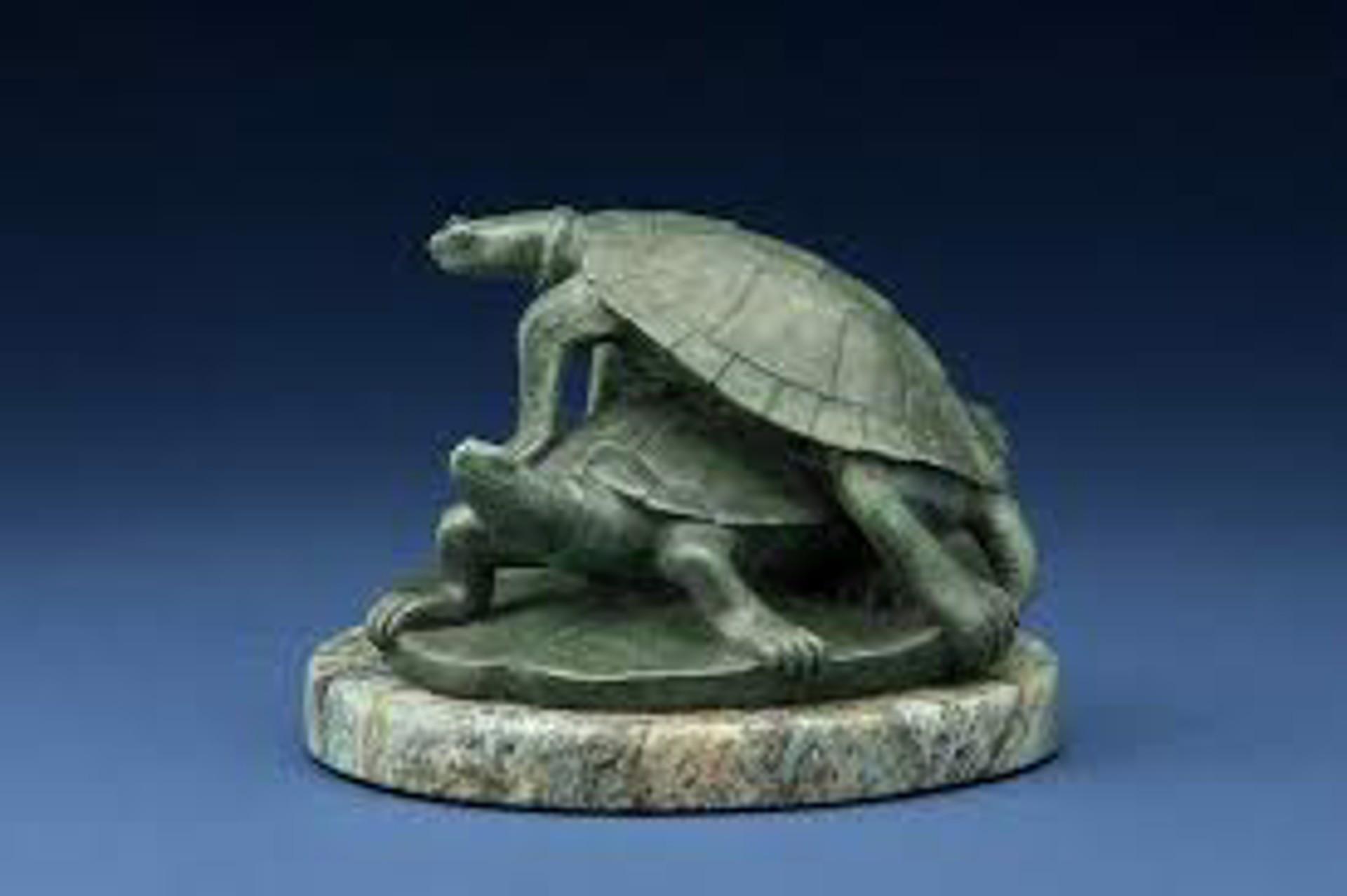Turtle Pad by Tony Hochstetler