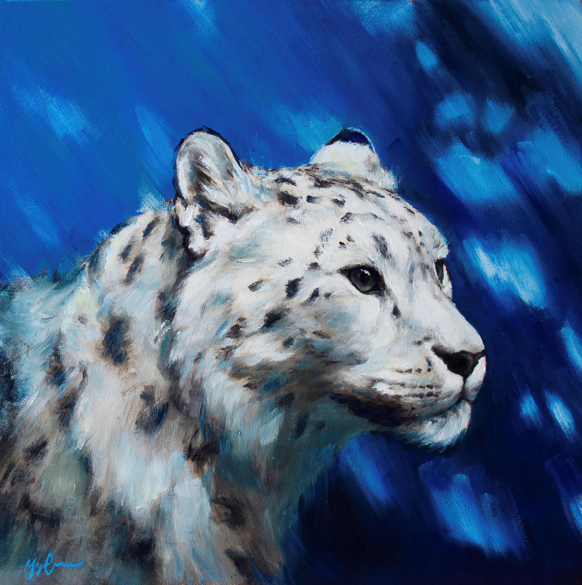 Snow Leopard by Morgan Cameron