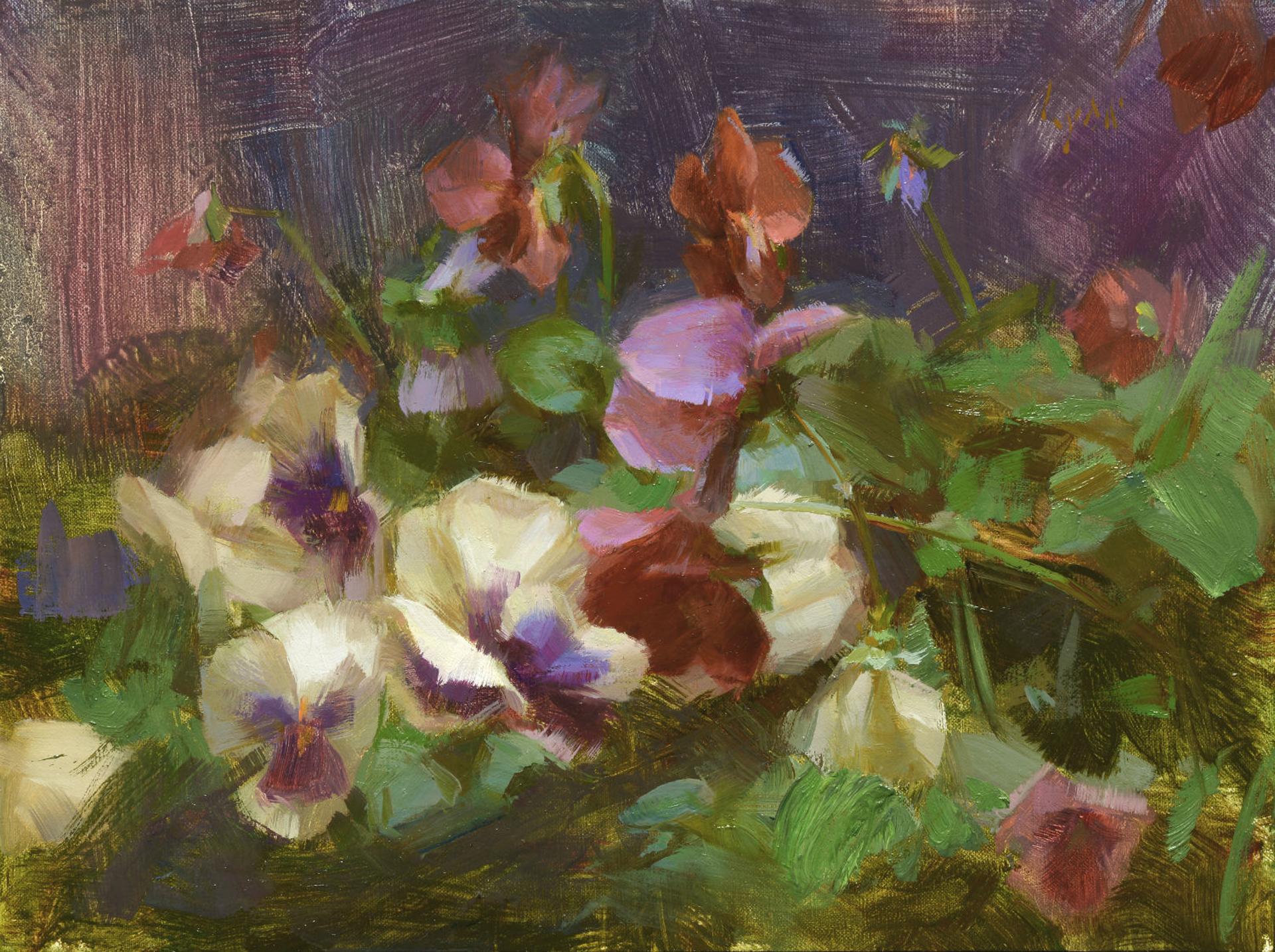 Pansies by Susan Lyon