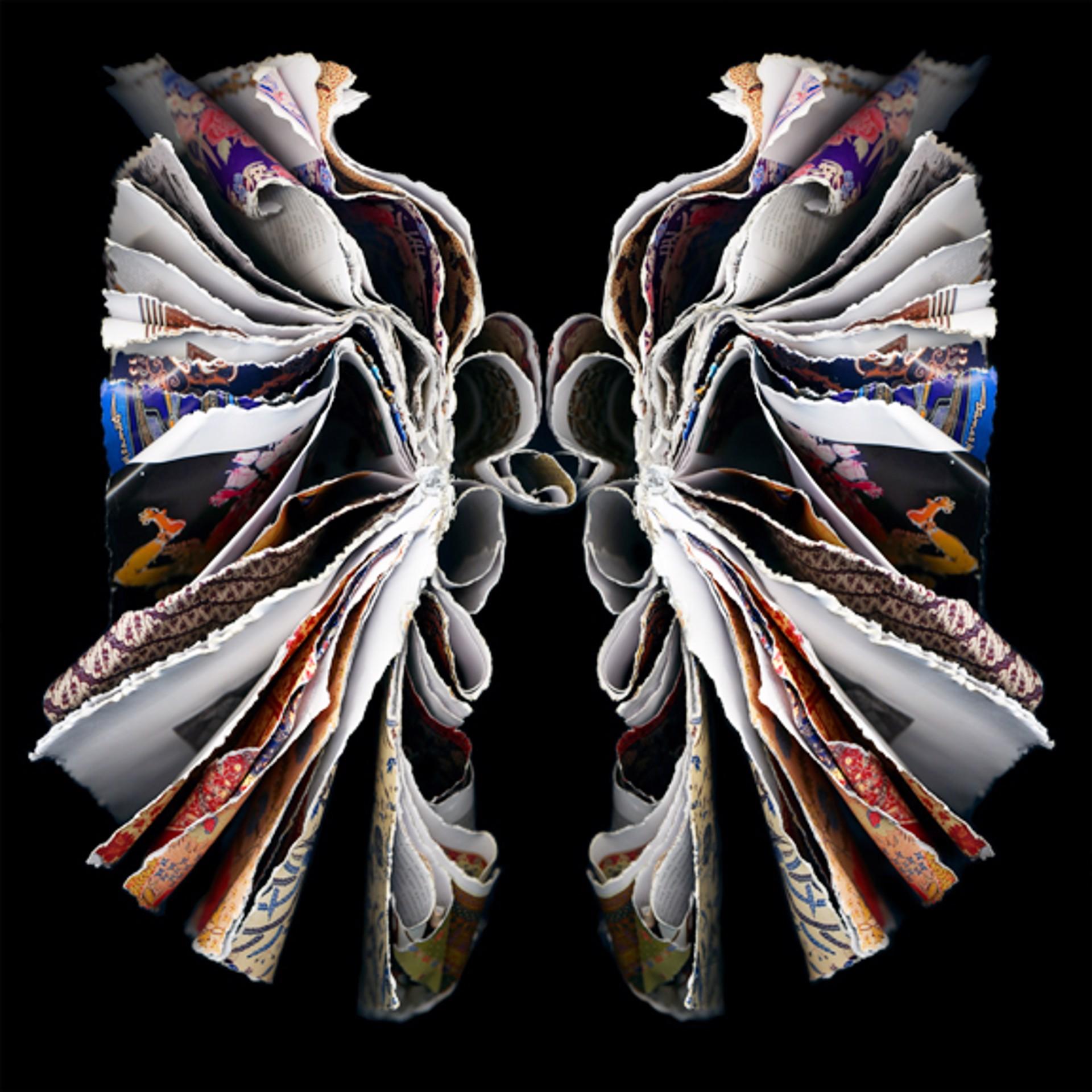 Moth by Cara Barer