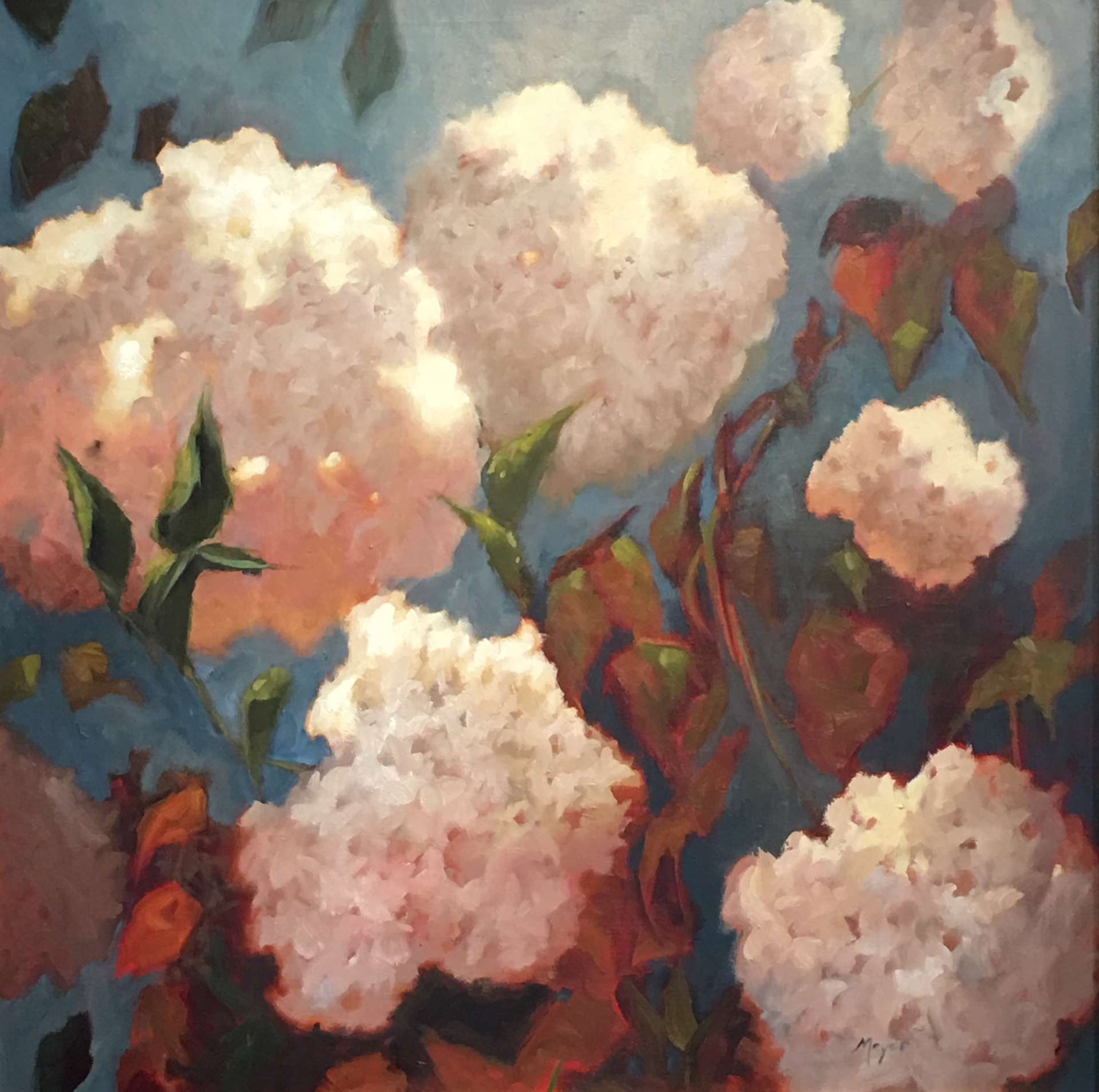 Grand Flowers at Sunset  by Laurie Meyer