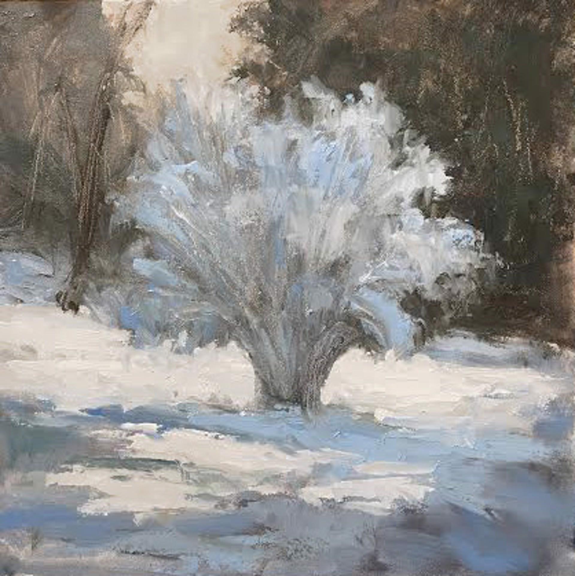Snowy Bush by Jane Hunt