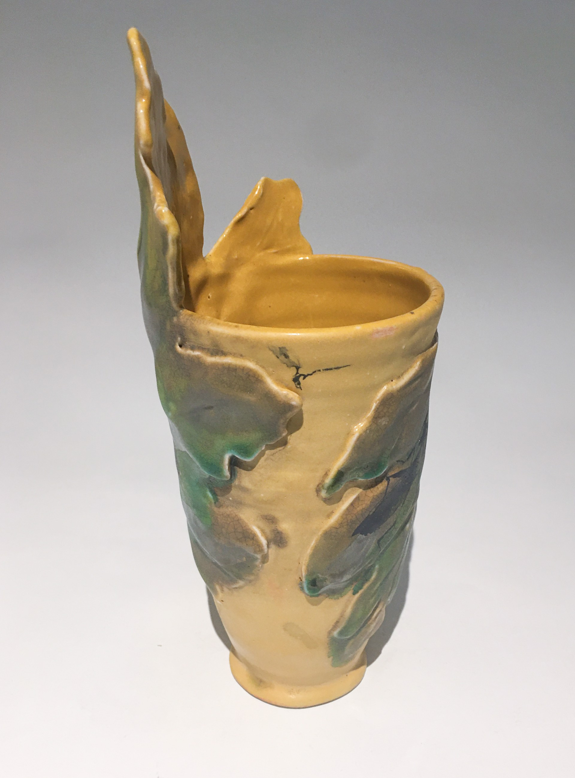 Insect Vase 1 by Caroline Bottom Anderson