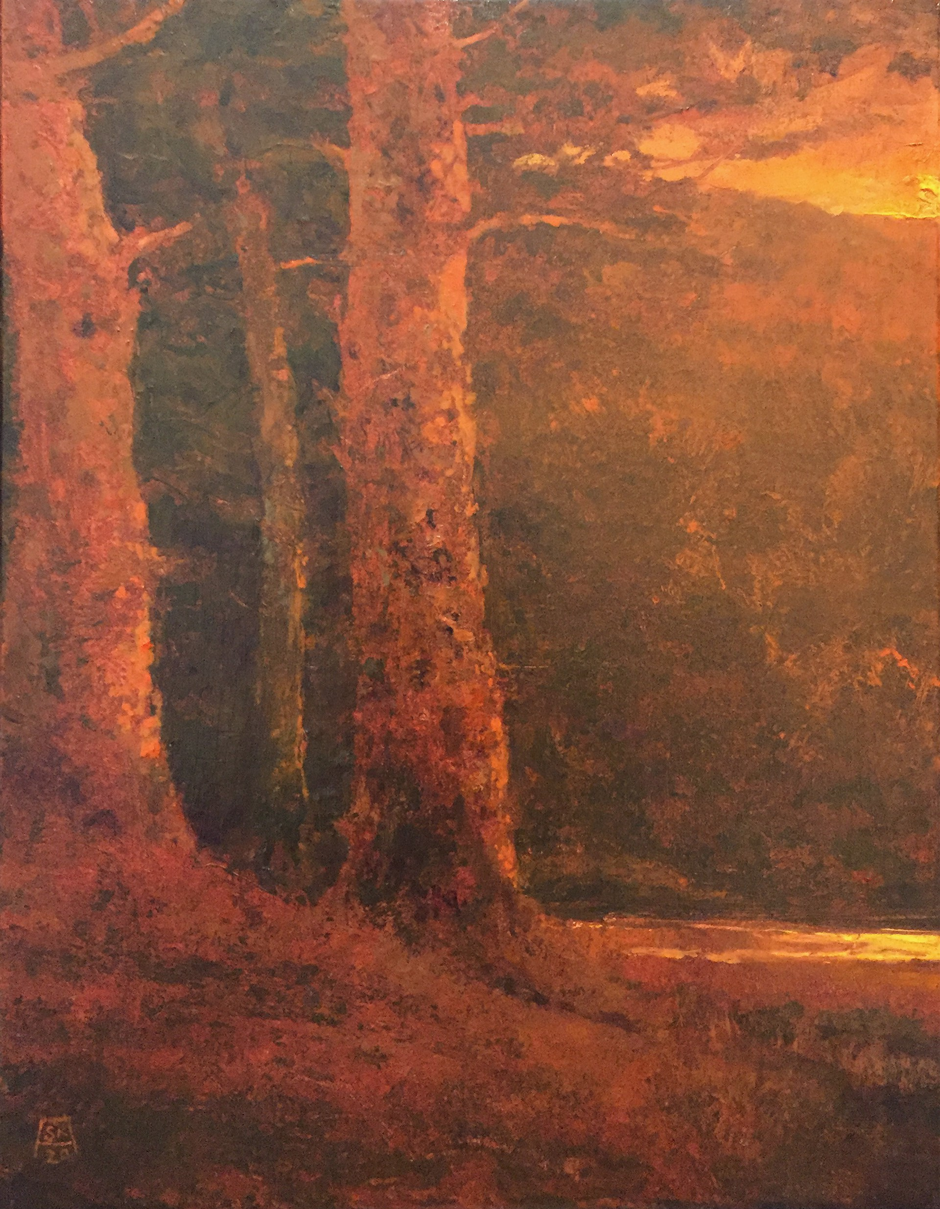 Ghost Pines by Shawn Krueger