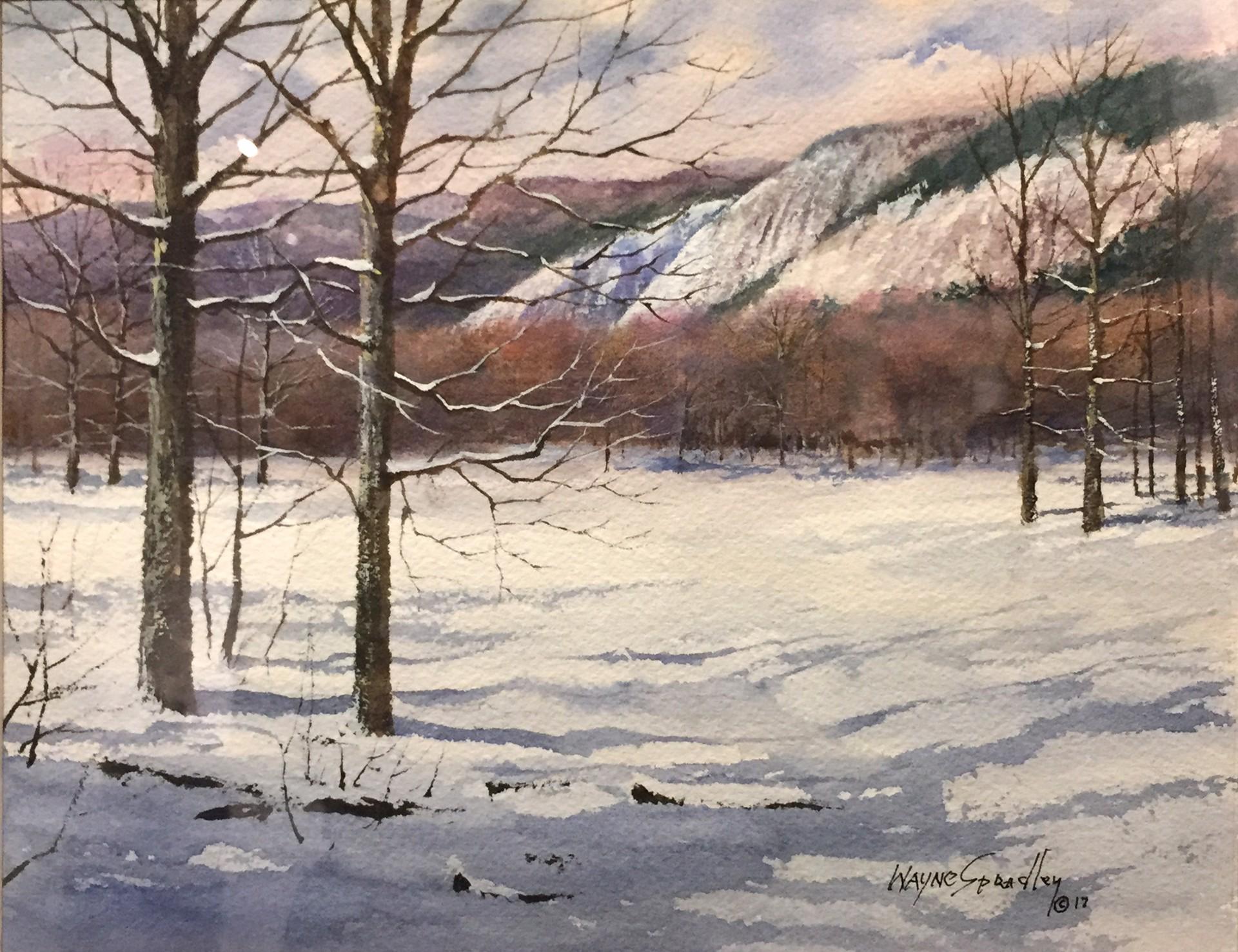 Lonesome Valley in Winter by Wayne Spradley