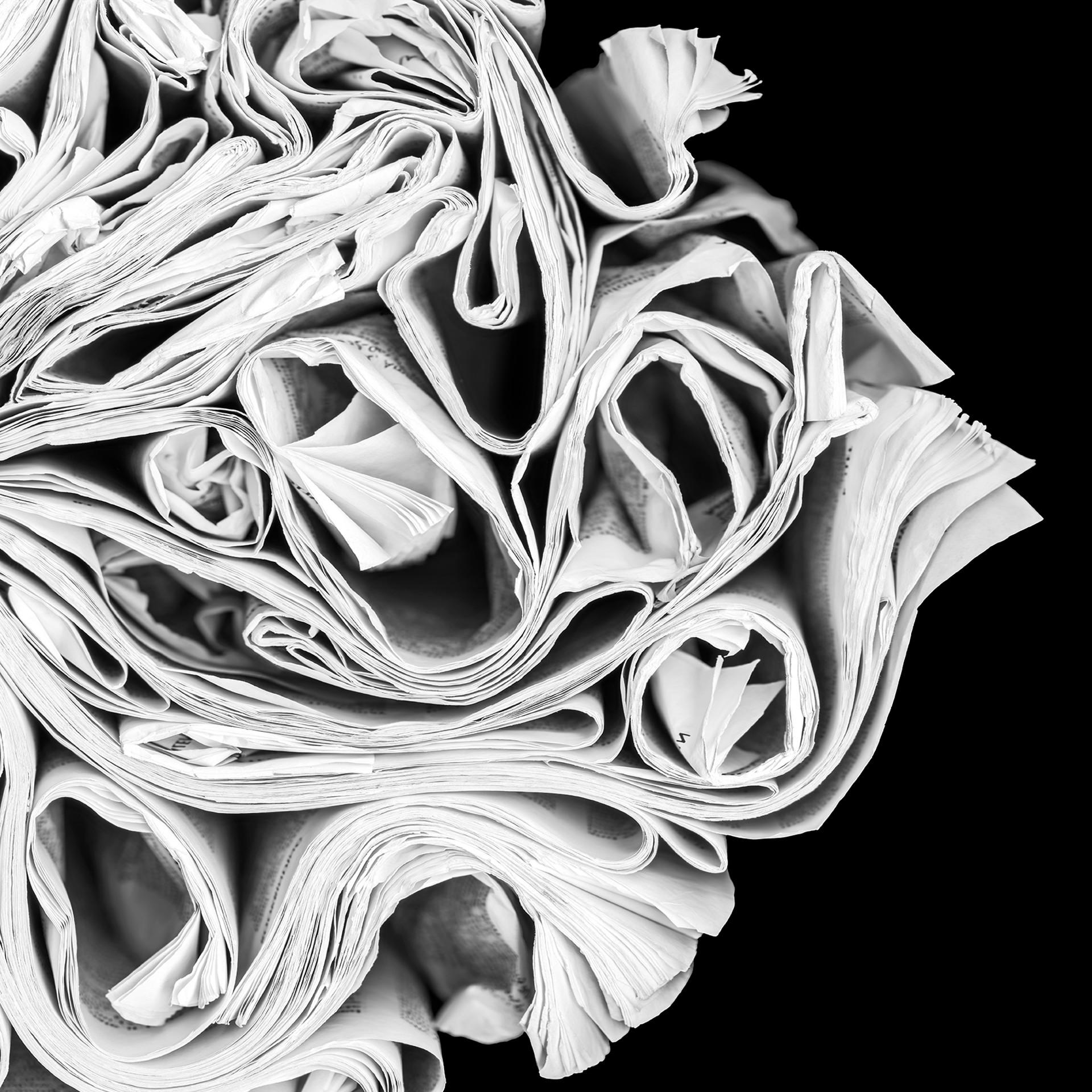 Waves by Cara Barer