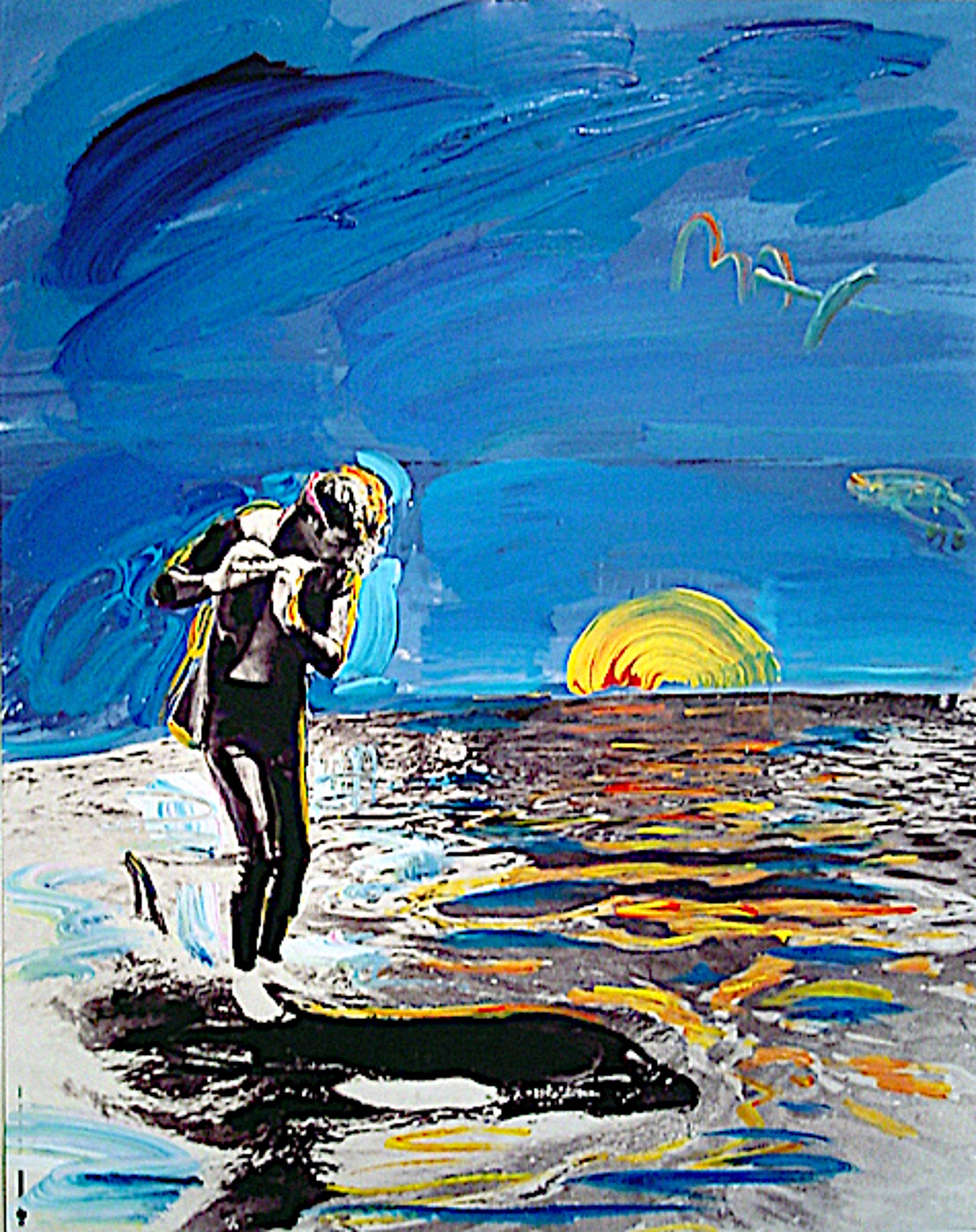 The Dolphin Project by Peter Max