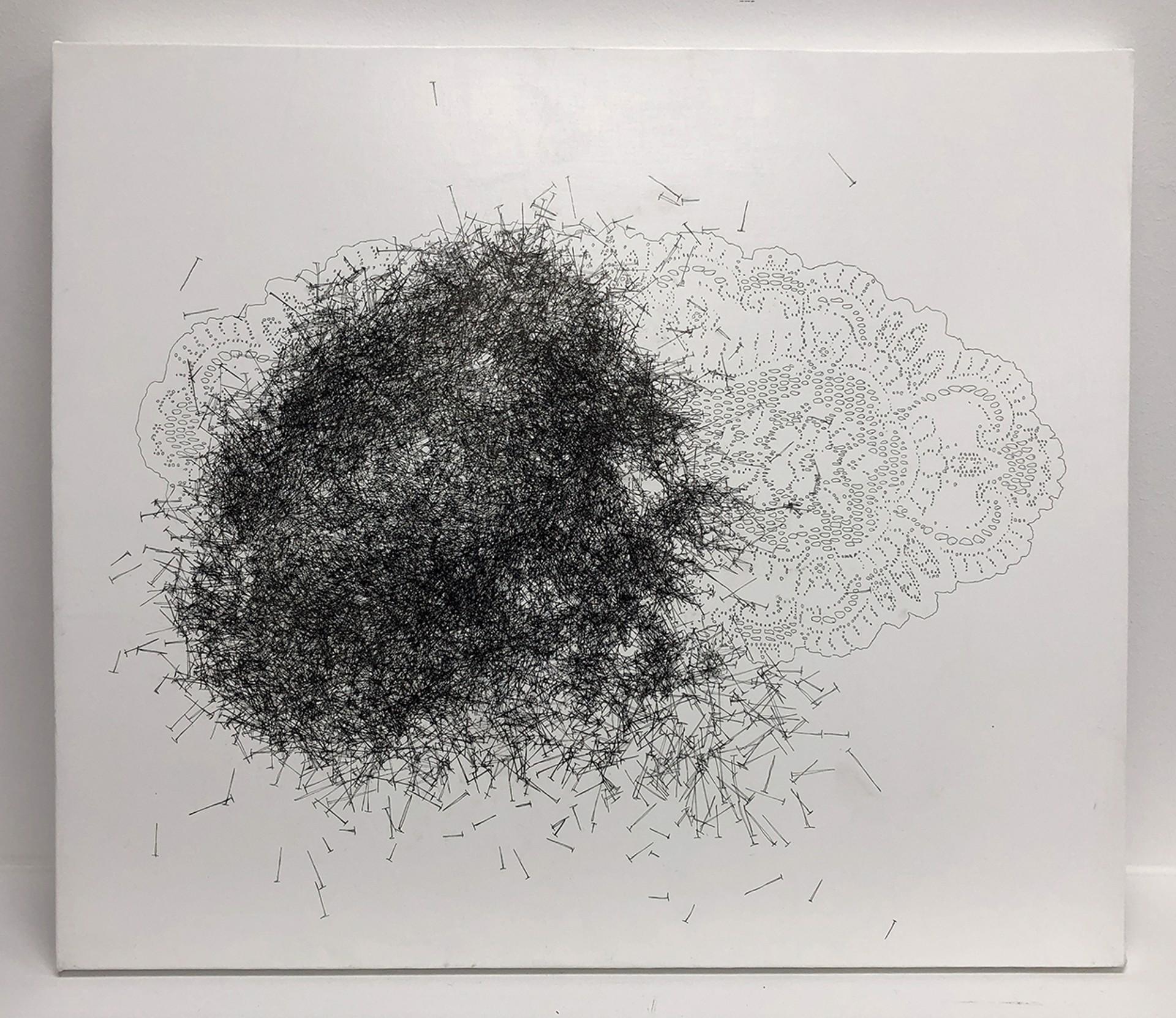 9,354 Nails by John Adelman