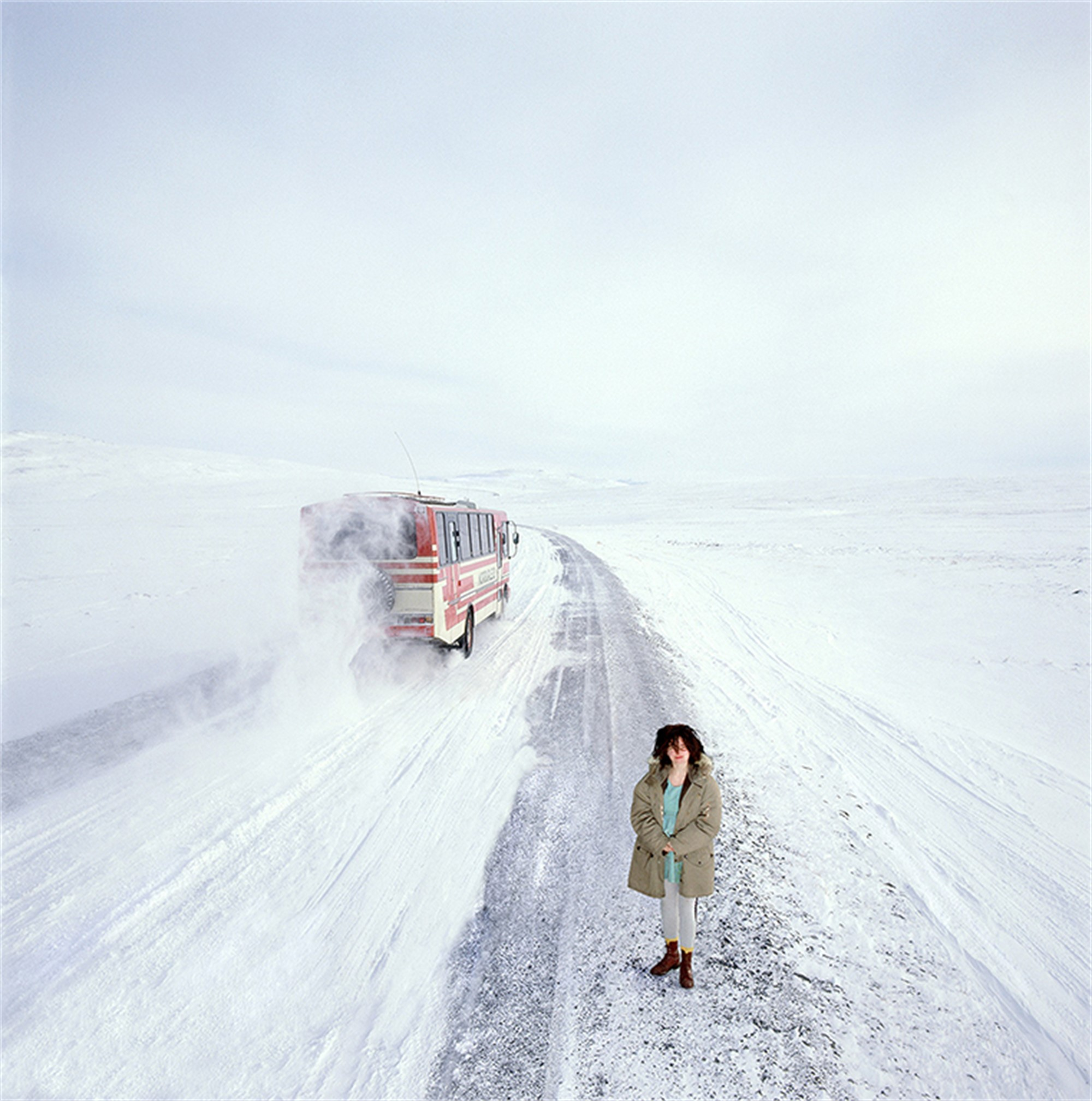 88045 Bjork Standing in Snow Color by Timothy White