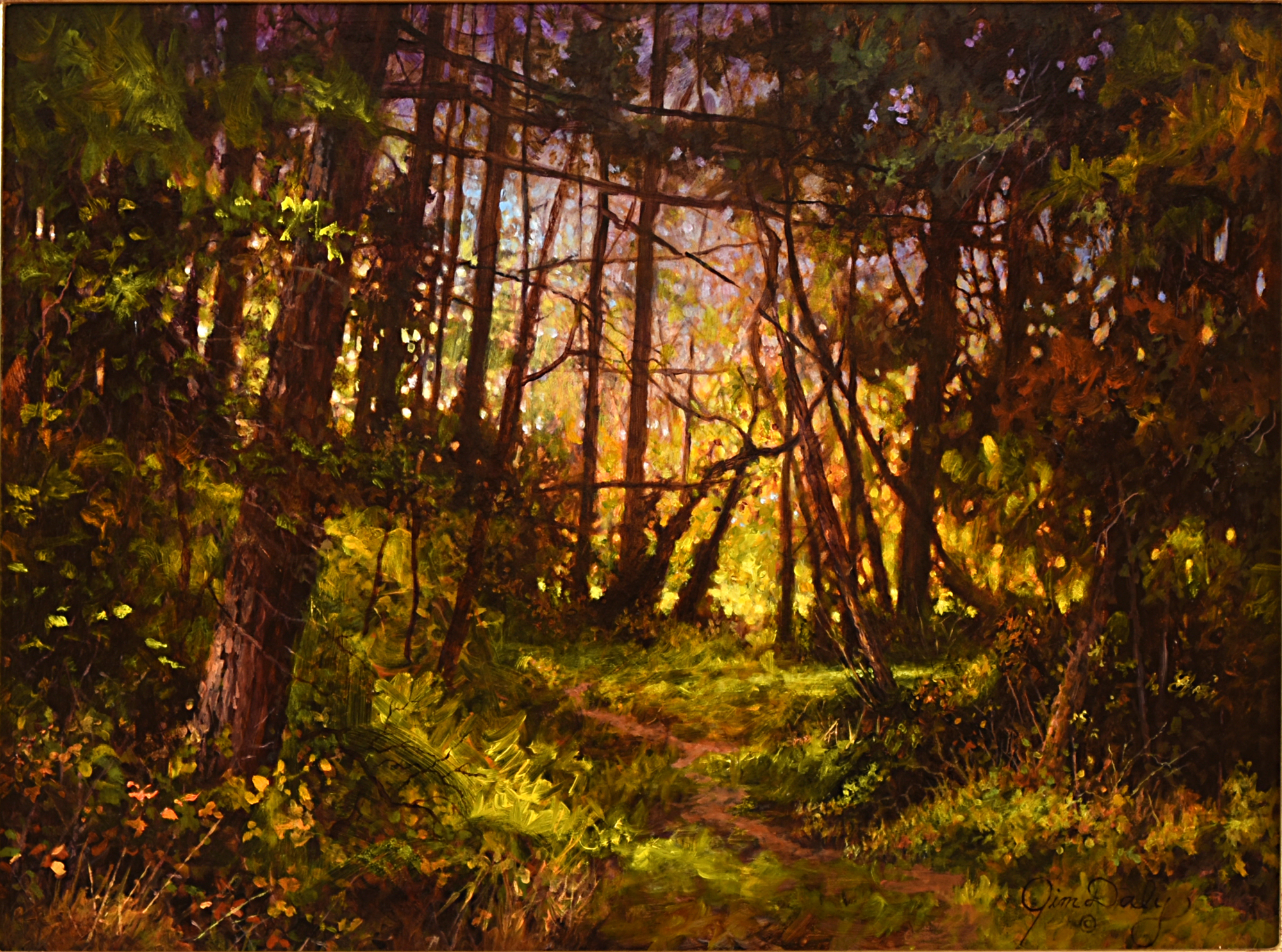 Into the Woods by Jim Daly