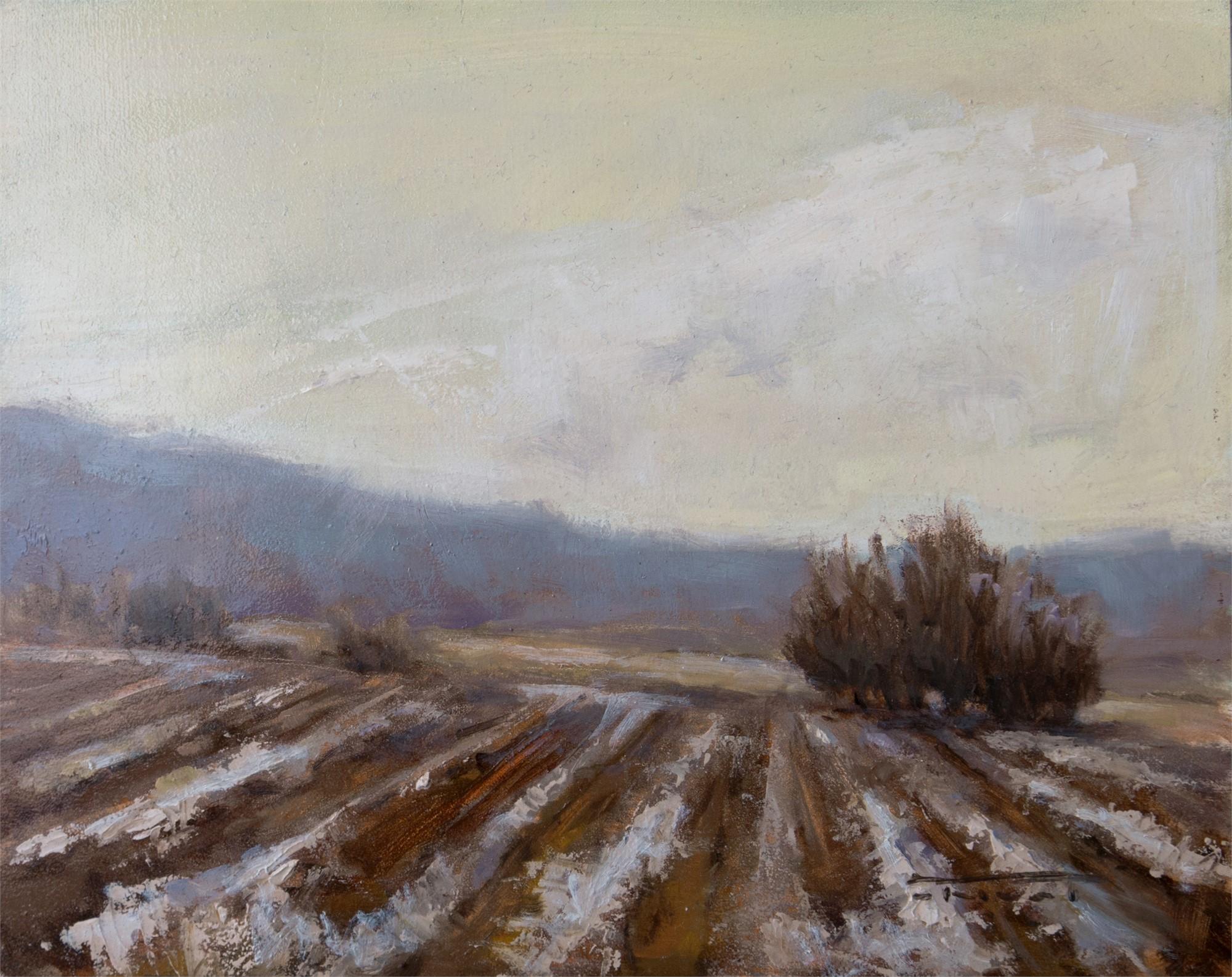 Winter Furrows by Jane Hunt