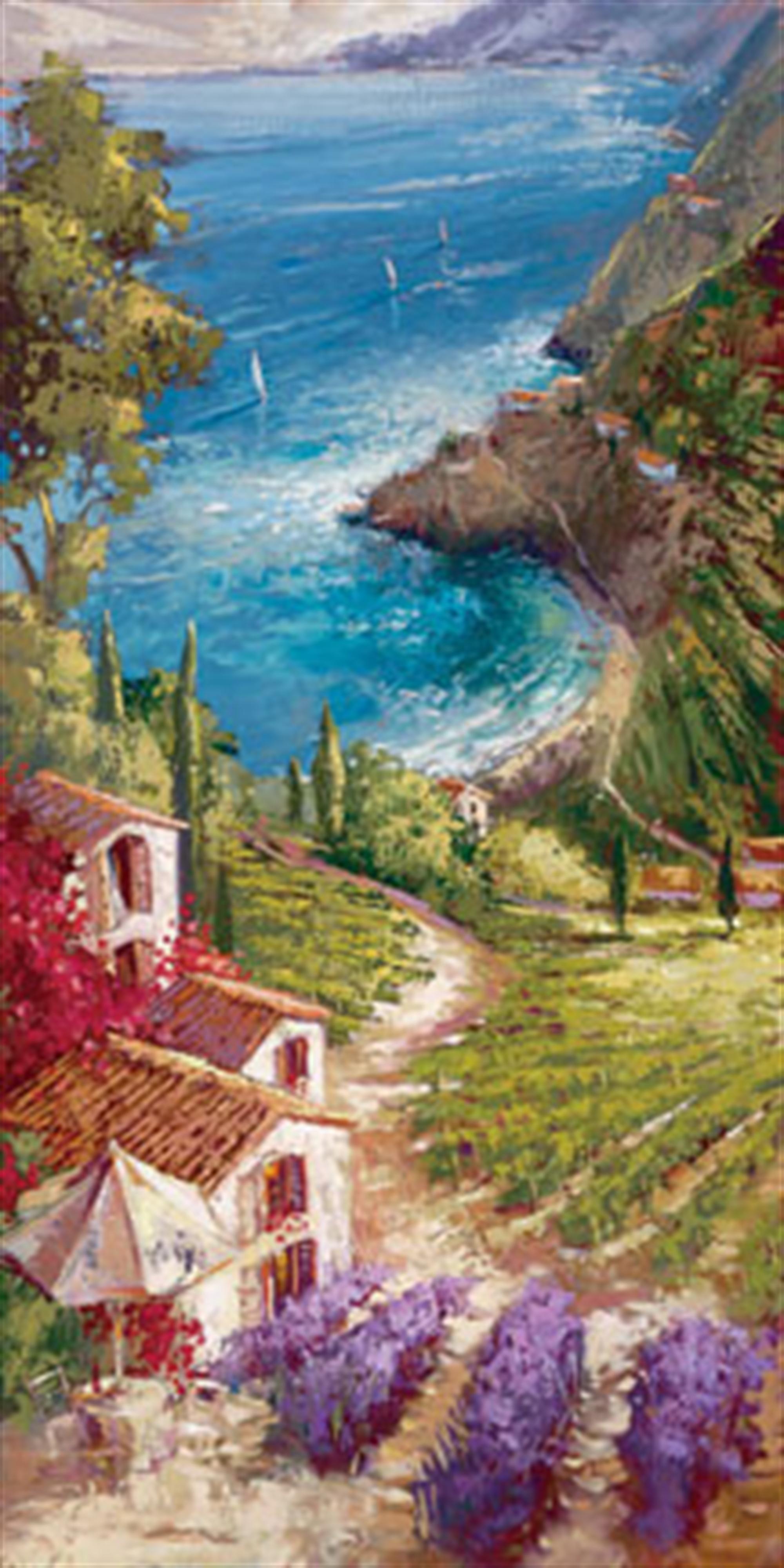 Amalfi Vineyard by Steven Quartly