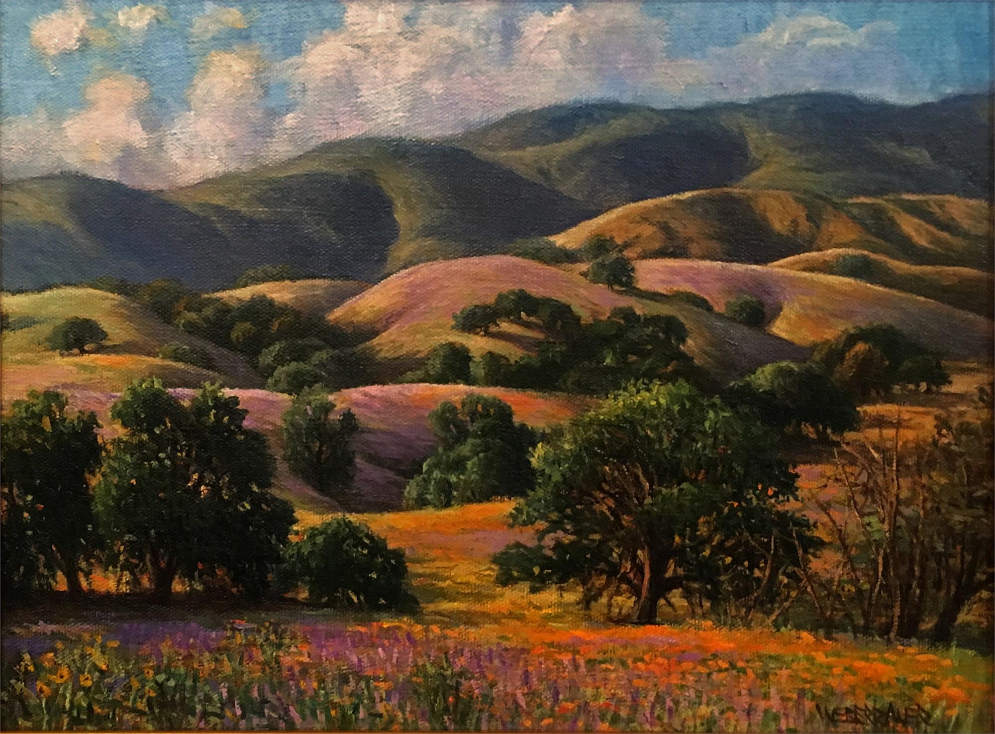 California Fields by WEBERBAUER